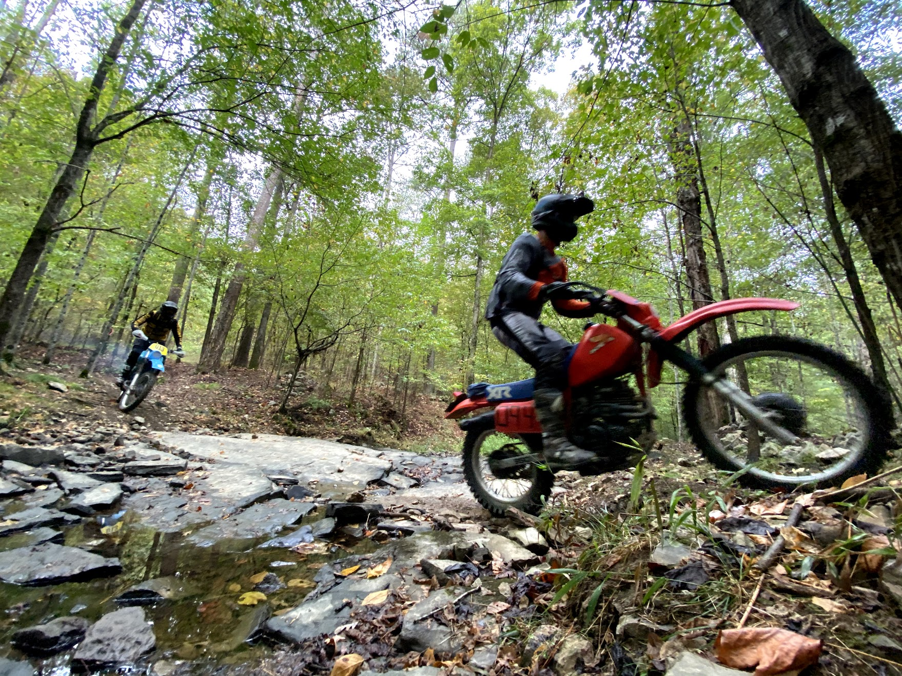 Barber bikes trail action