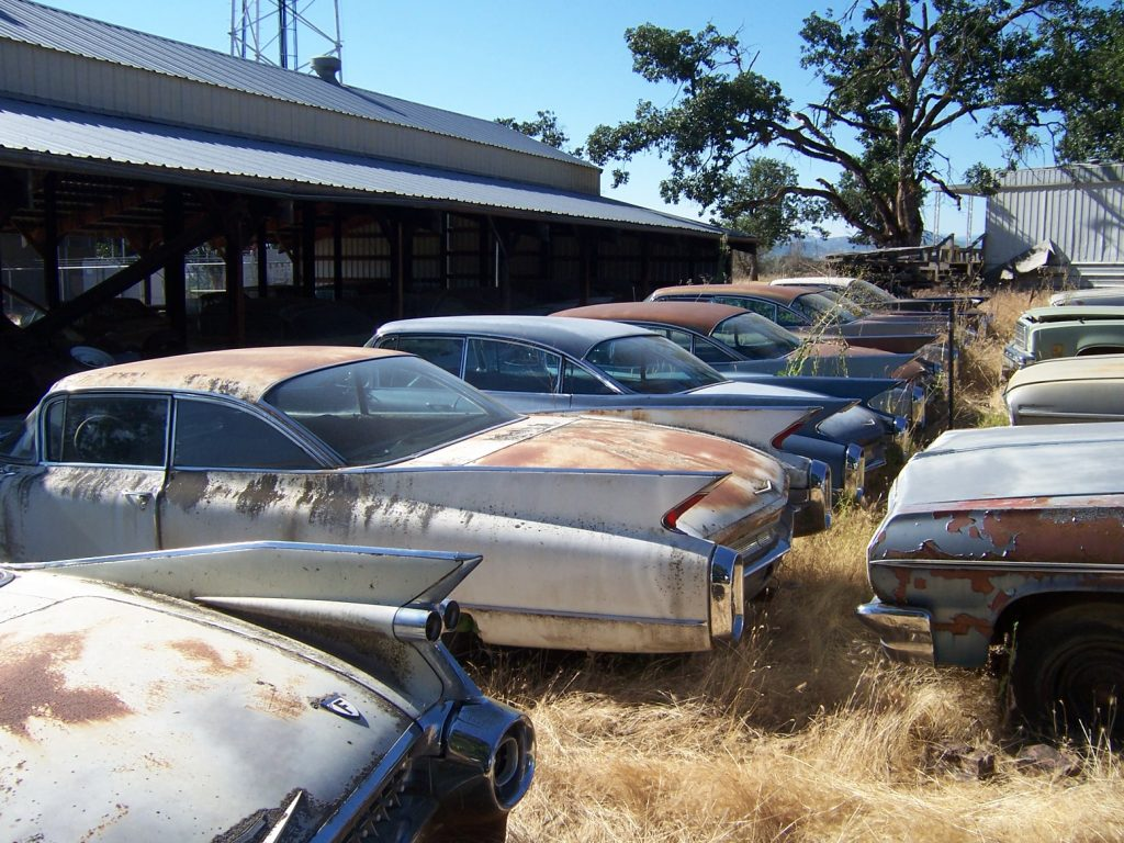 old vintage cadillac fins in field