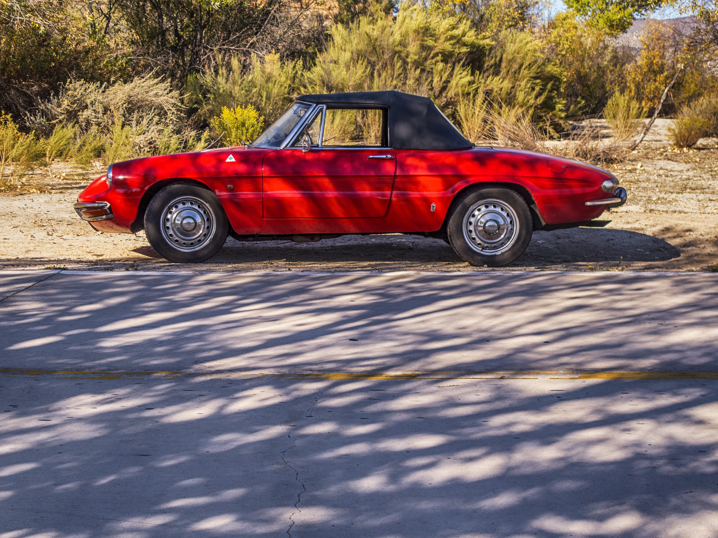 vintage 1967 alfa romeo duetto on roadside profile
