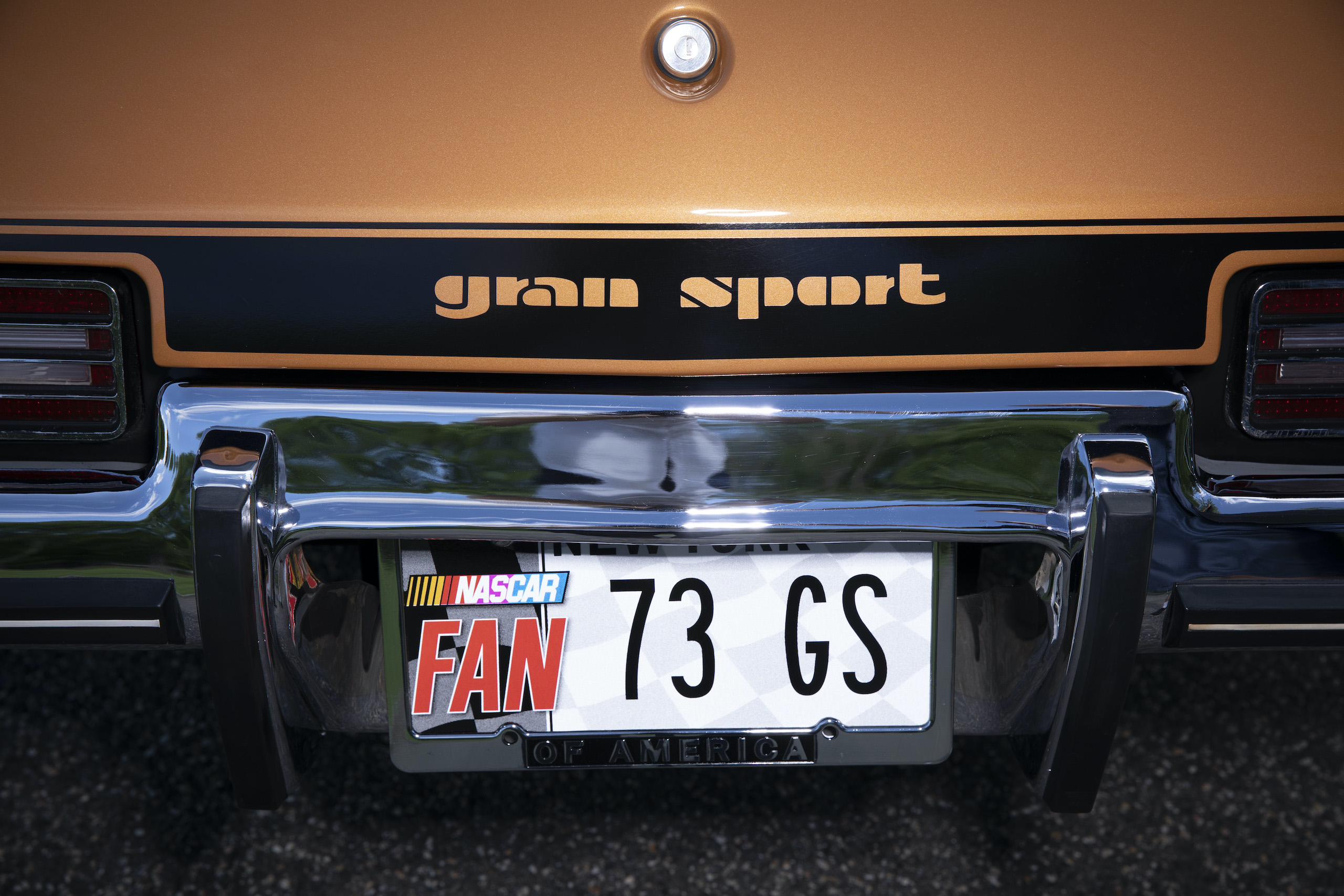 1973 Buick GS Stage 1 gran sport coupe decal