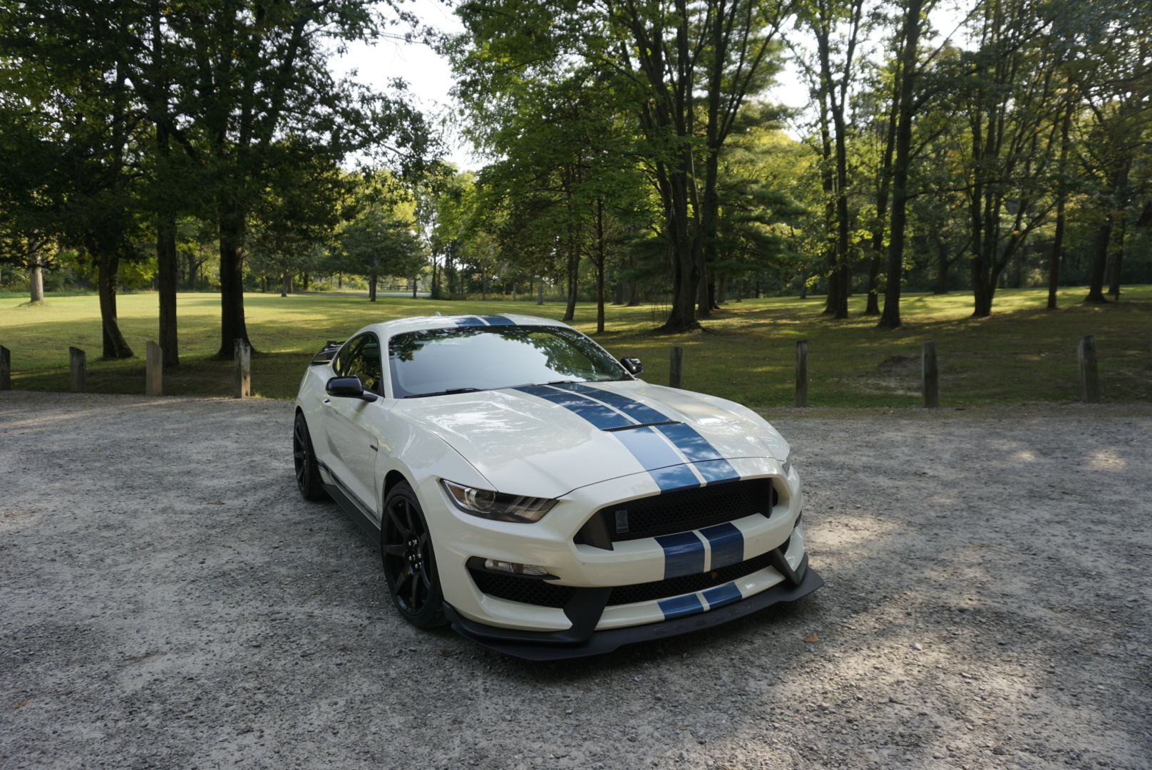 2020-Shelby-GT350R-Heritage-Edition front three quarter