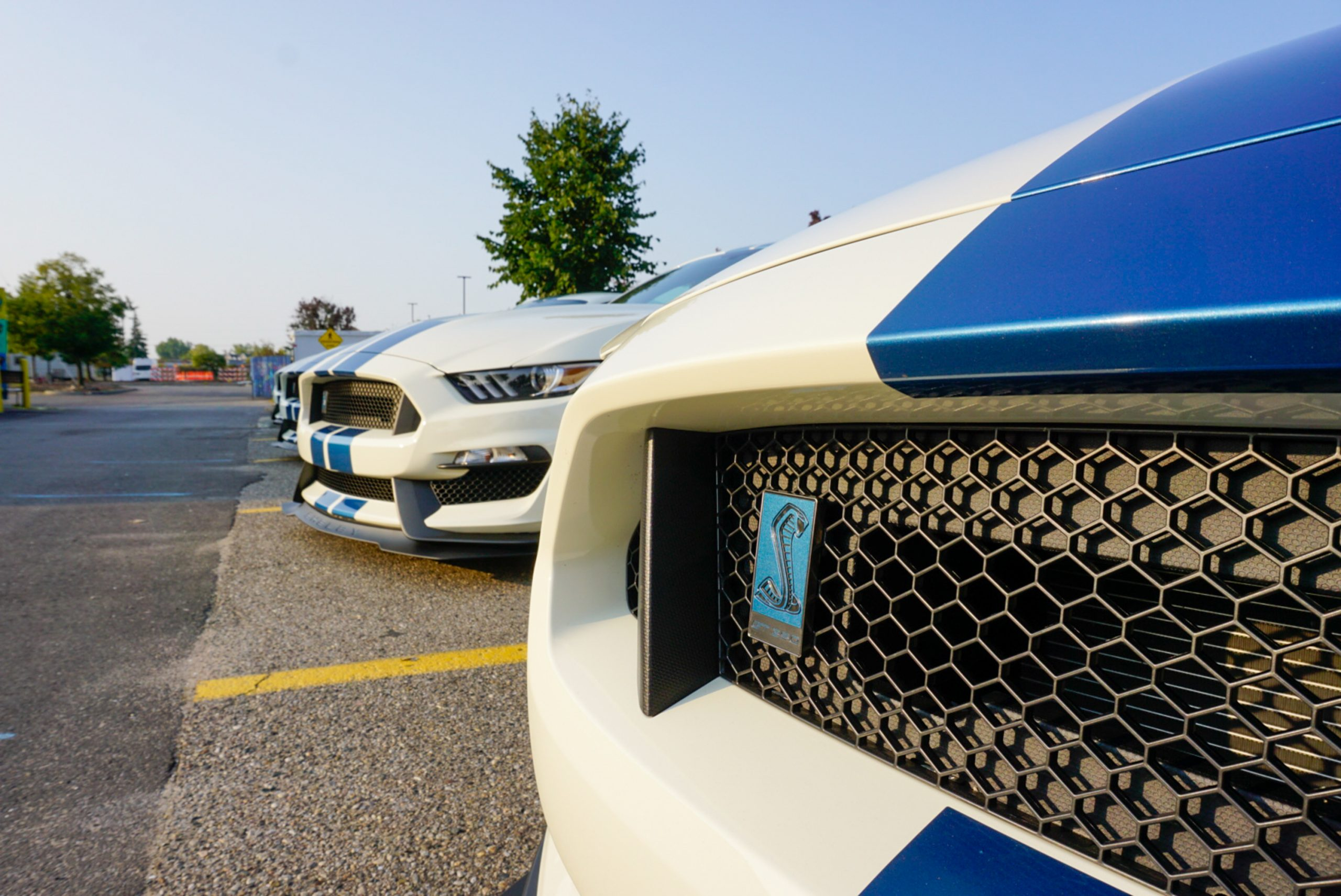 2020-Shelby-GT350R-Heritage-Edition-EW2-badge