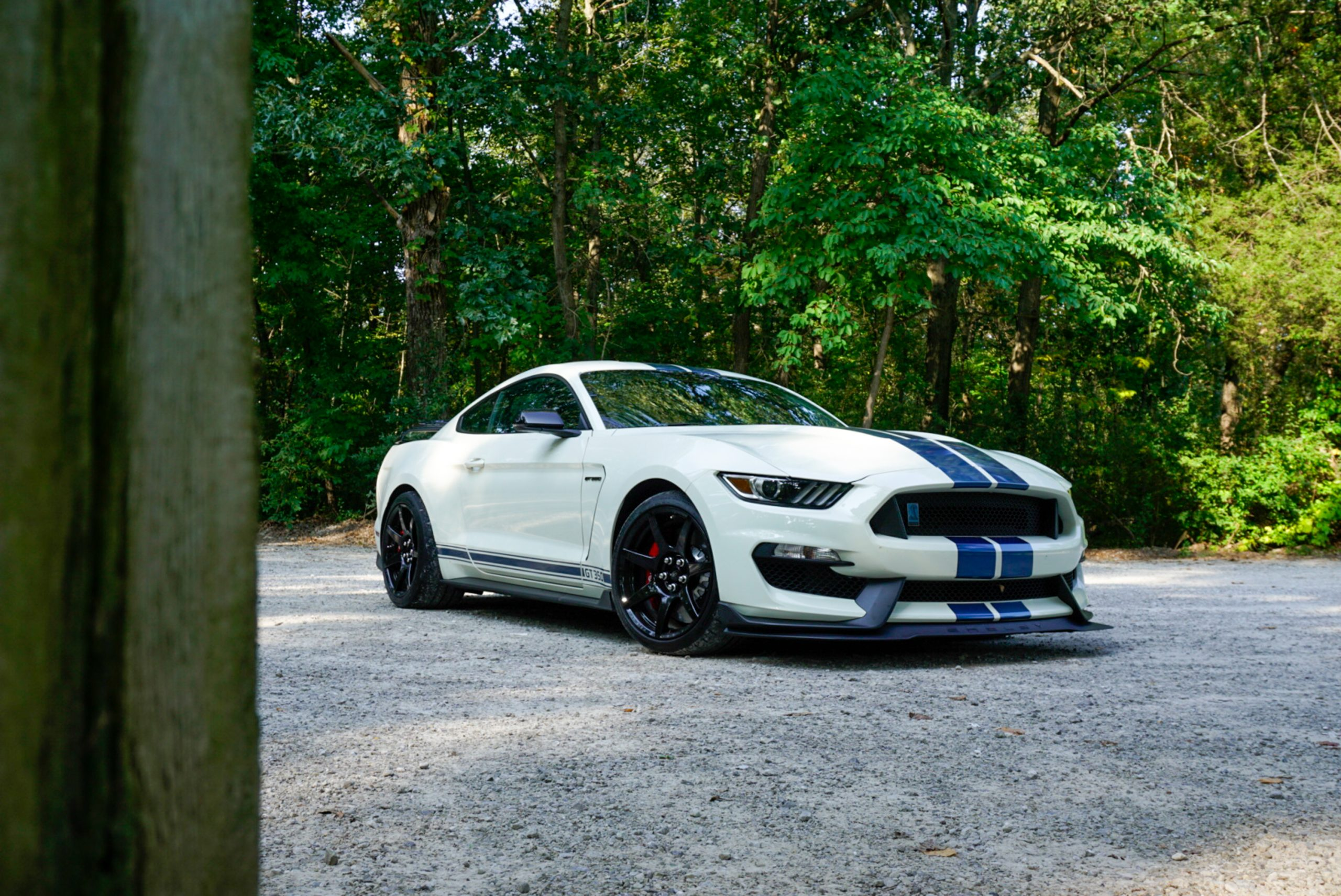 2020-Shelby-GT350R-Heritage-Edition-EW2-8-front three quarter