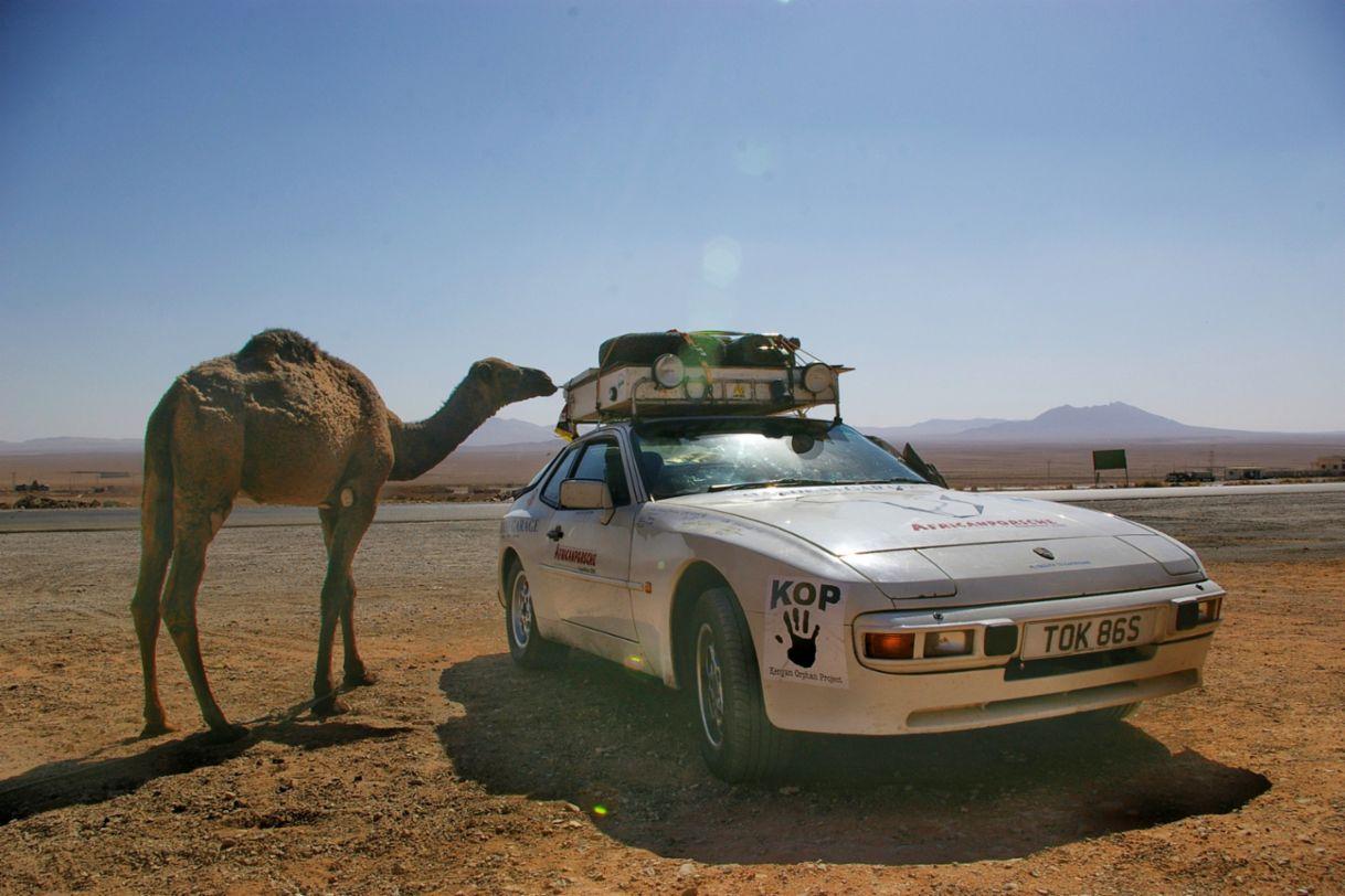 Africa Porsche 944 curious onlooking Camel