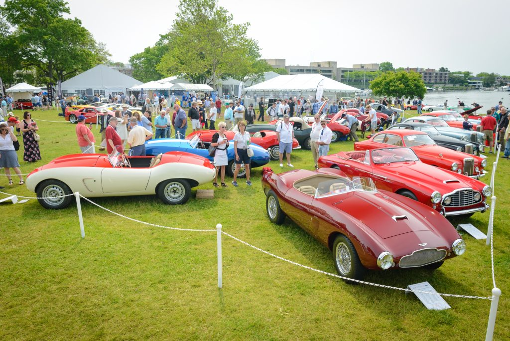 greenwich concours vintage cars in rows