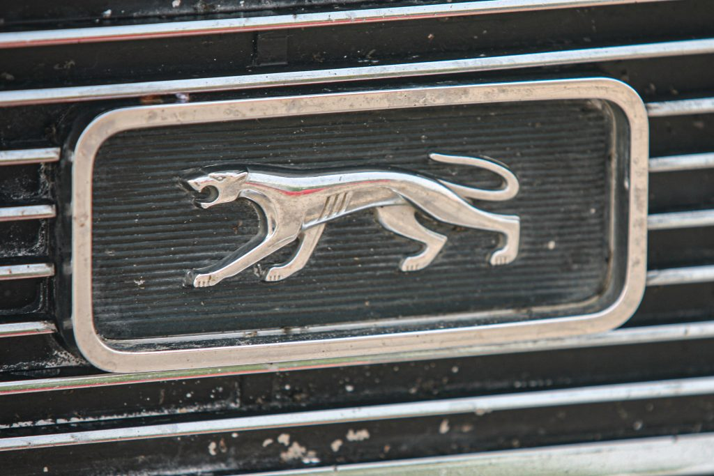 Mercury Cougar Emblem