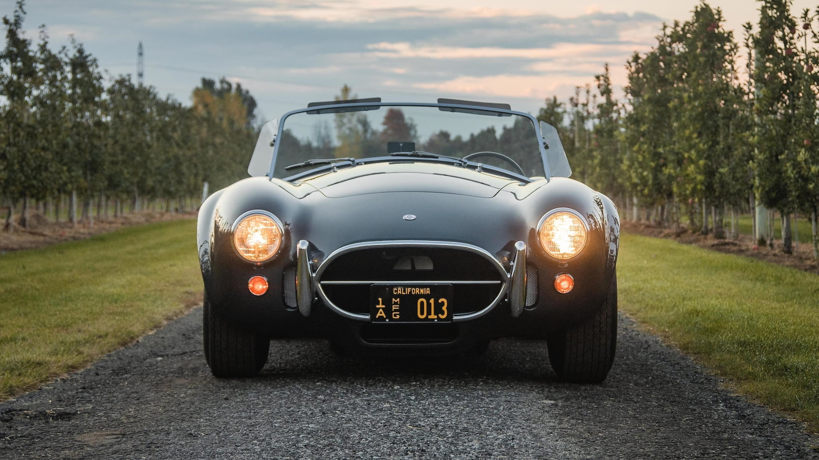 Shelby 427 Cobra Roadster front