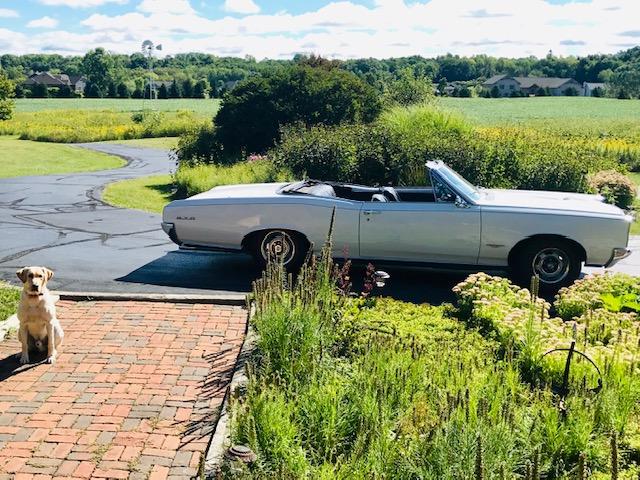 GTO side profile in drive