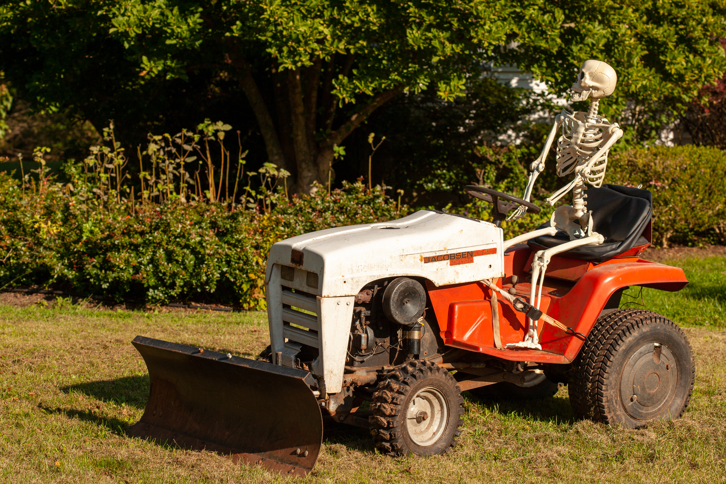 skeleton bones on riding lawn tractor front three-quarter