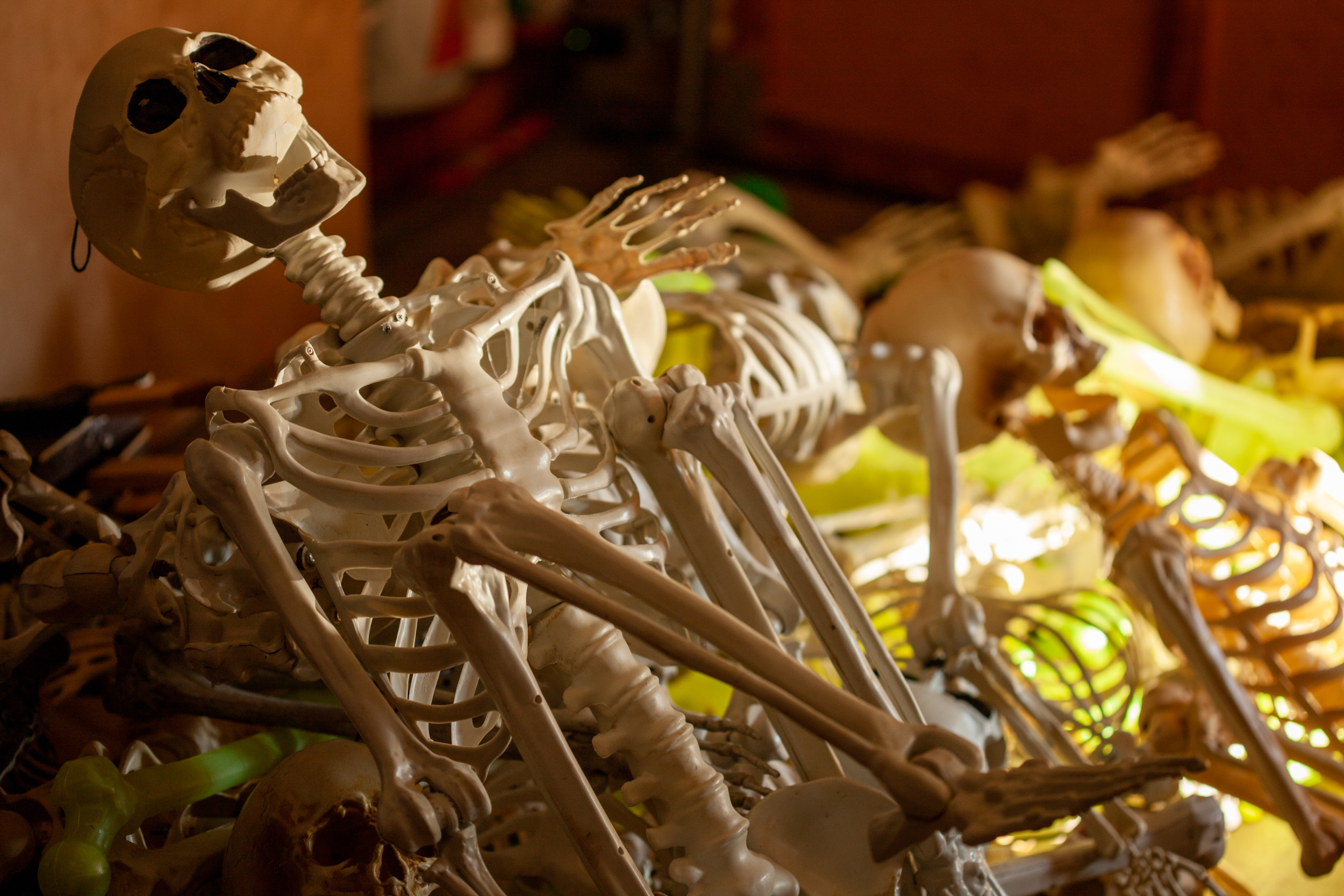 skeleton bones pile