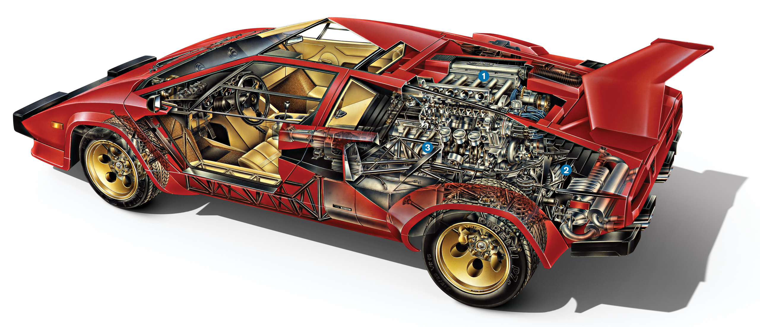 Ferruccio V12 Lamborghini Engine countach transparent graphic