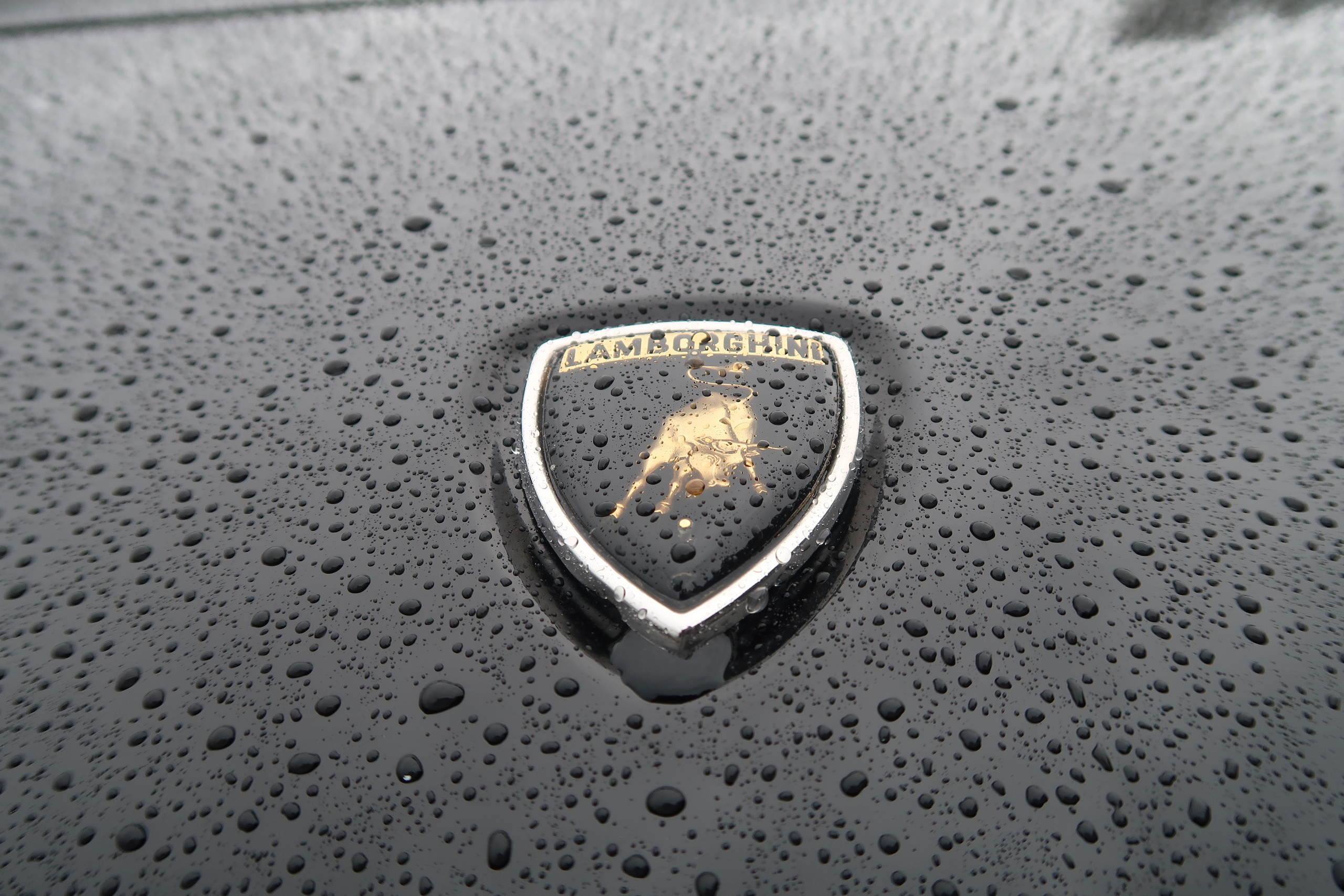 1986 Lamborghini Jalpa badge