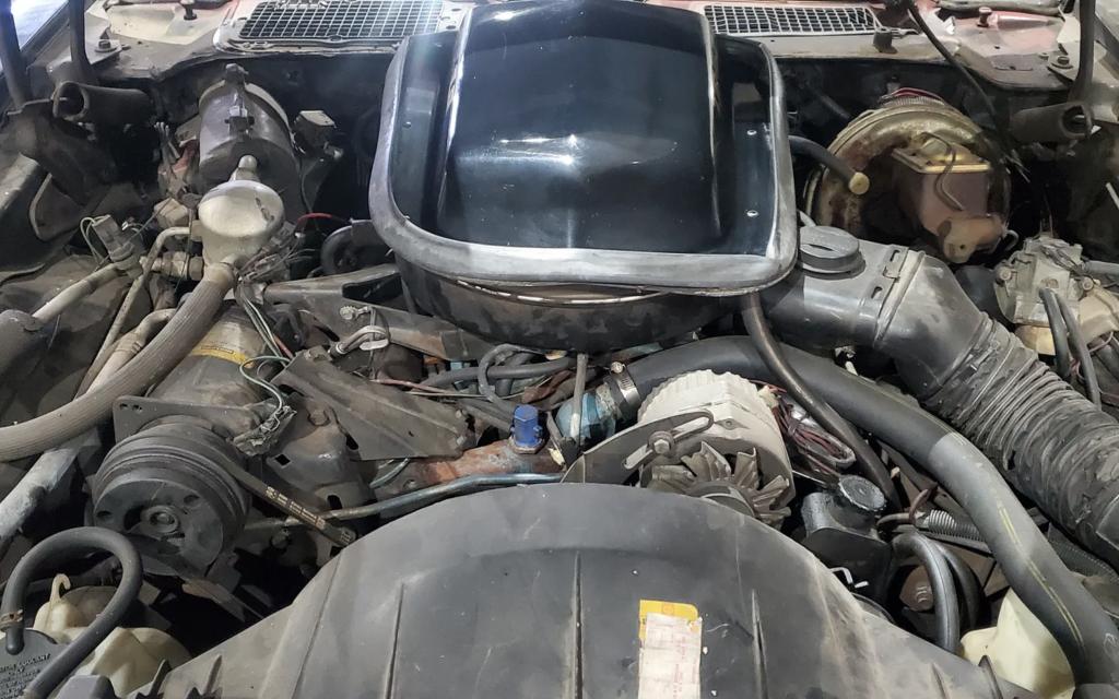 1978 Pontiac Firebird Trans Am barn find engine