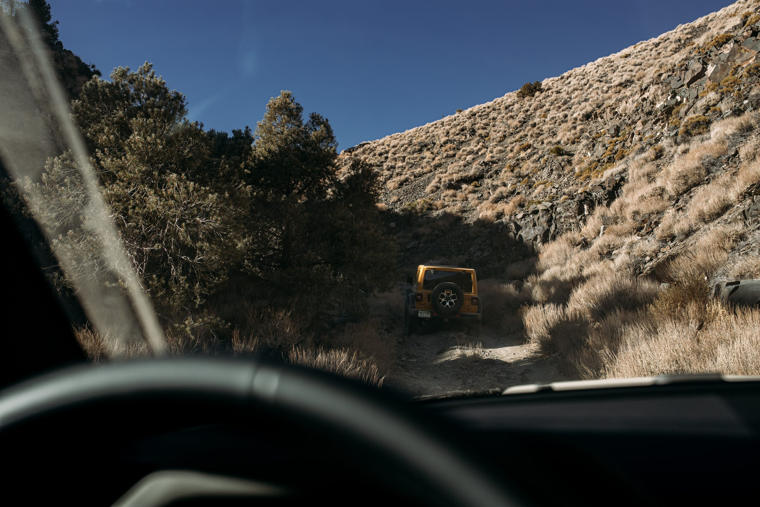 jeep wrangler on trail rear