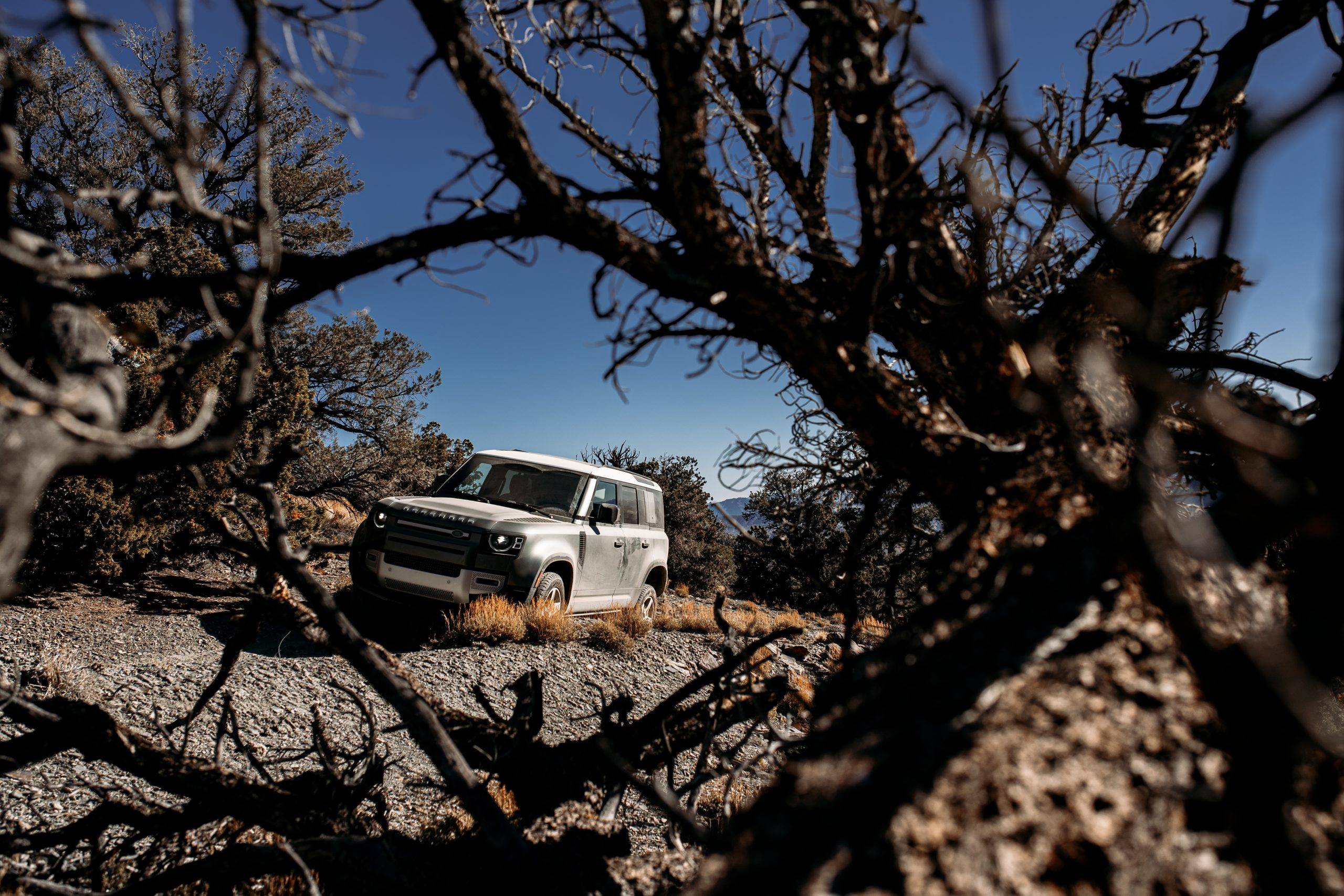 land rover defender on trail front three-quarter