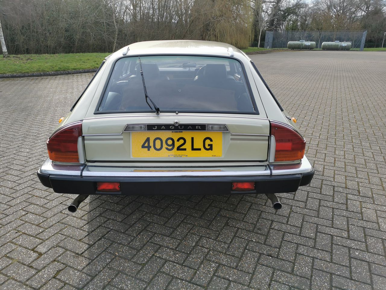 1983 Lynx Eventer rear