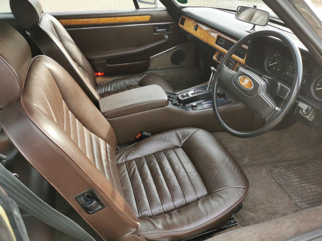 1983 Lynx Eventer interior