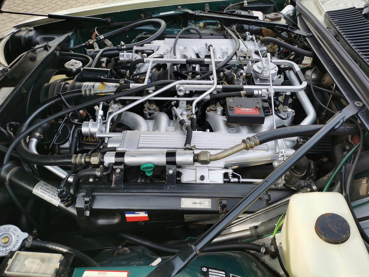1983 Lynx Eventer engine