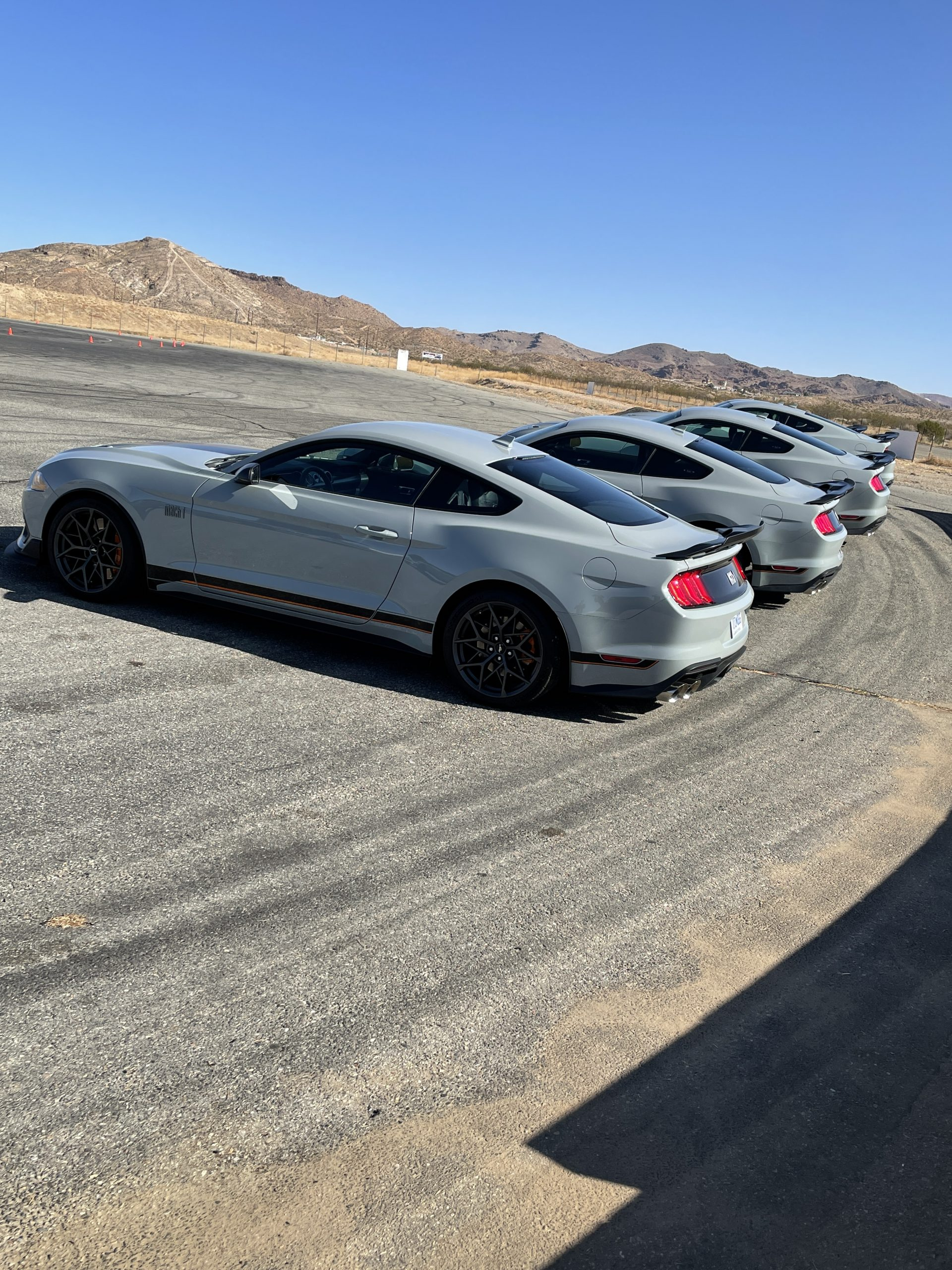 New Mustang Mach 1 grey line up
