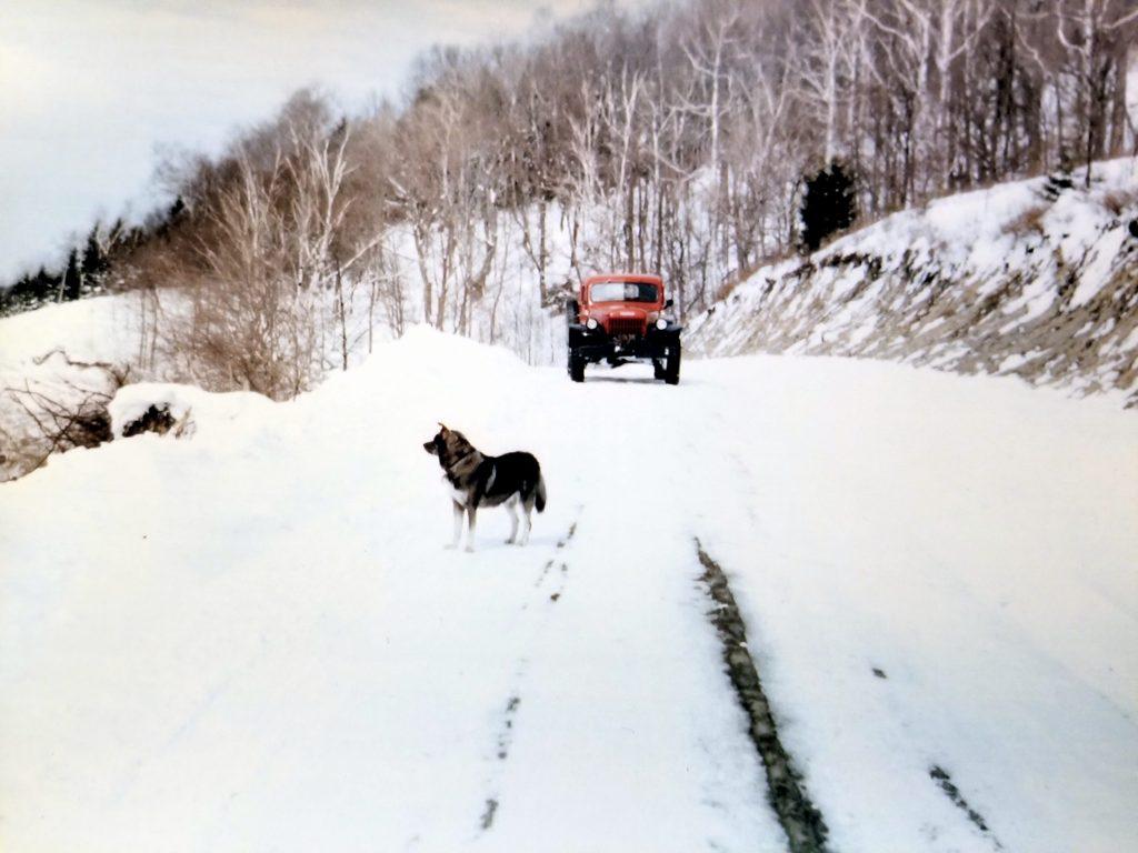 1956 Dodge Power Wagon mountain road