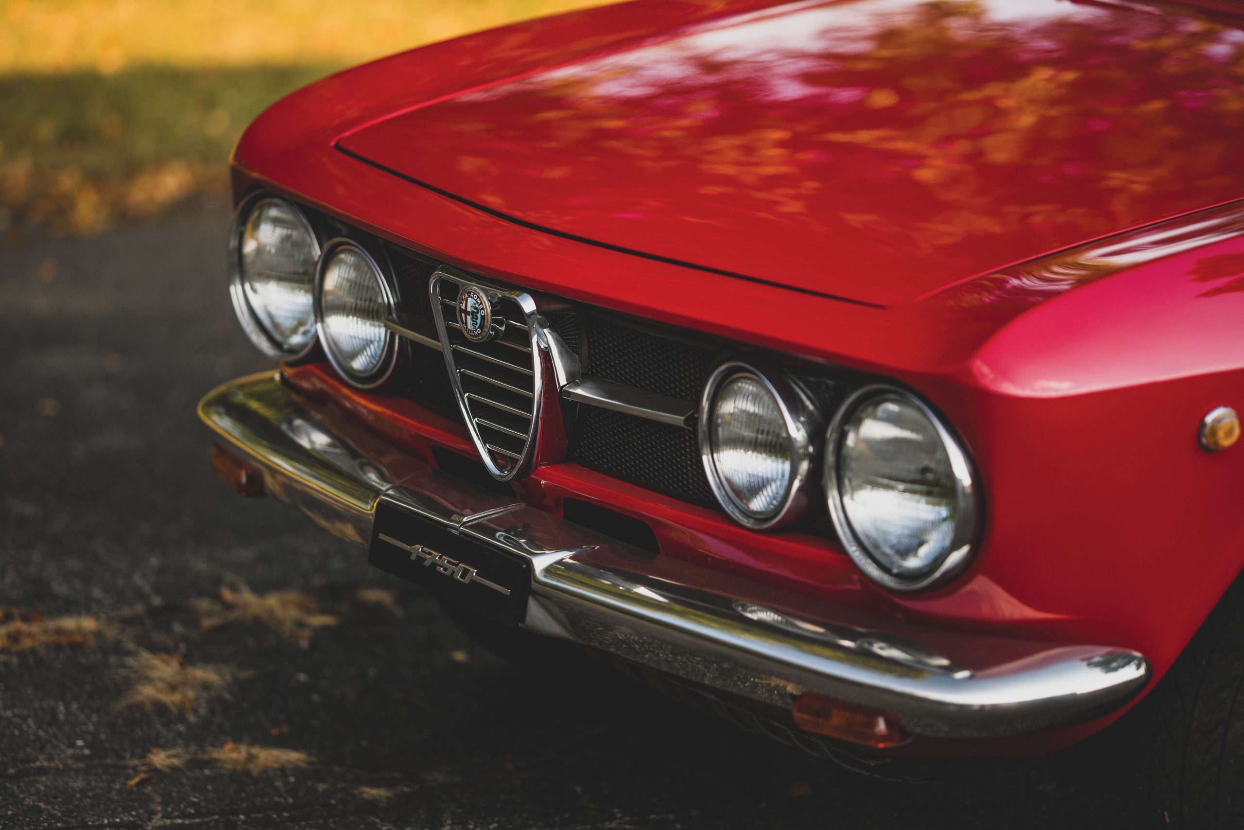 1969-Alfa-Romeo-1750-GT-Veloce front end
