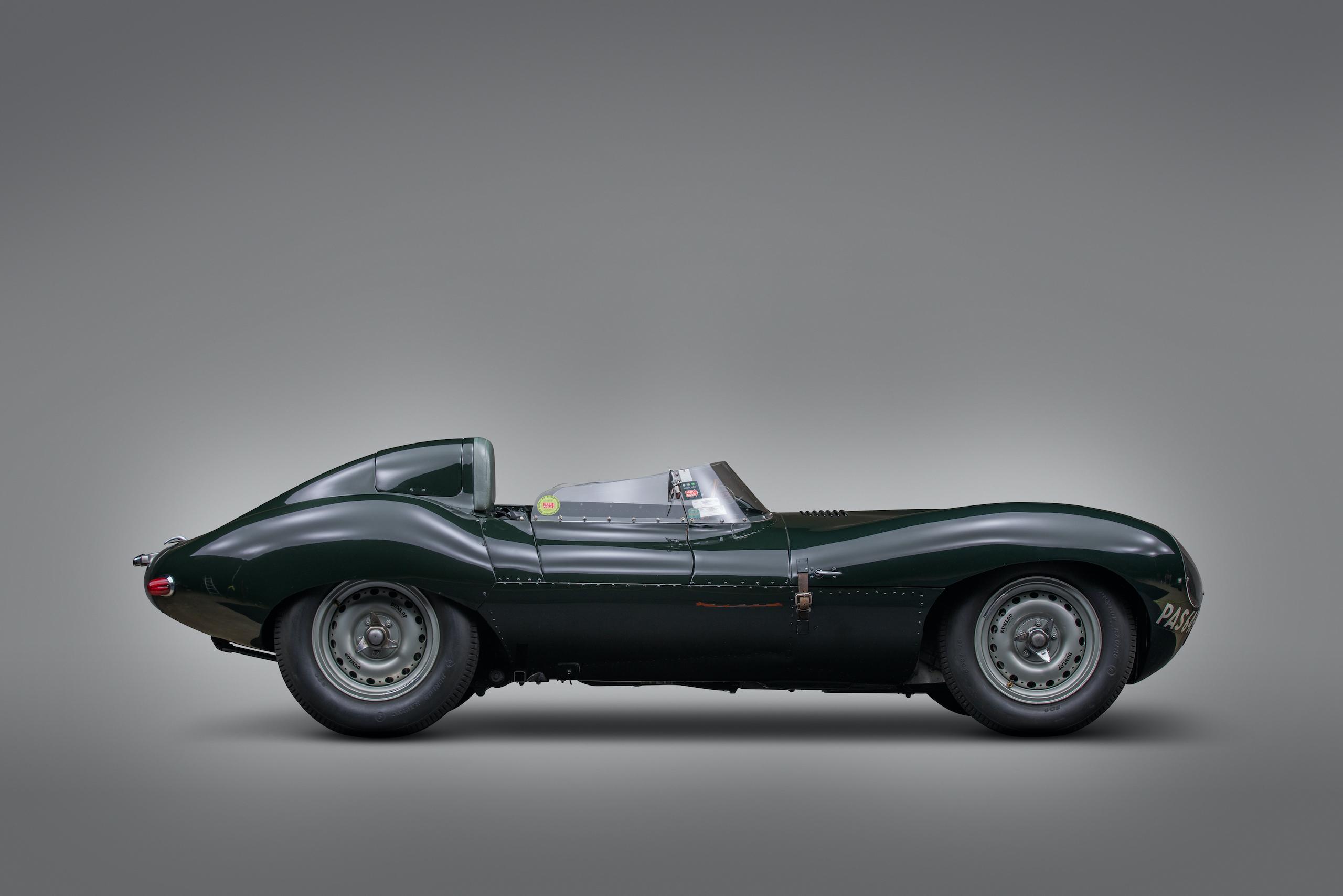 jaguar d-type side profile