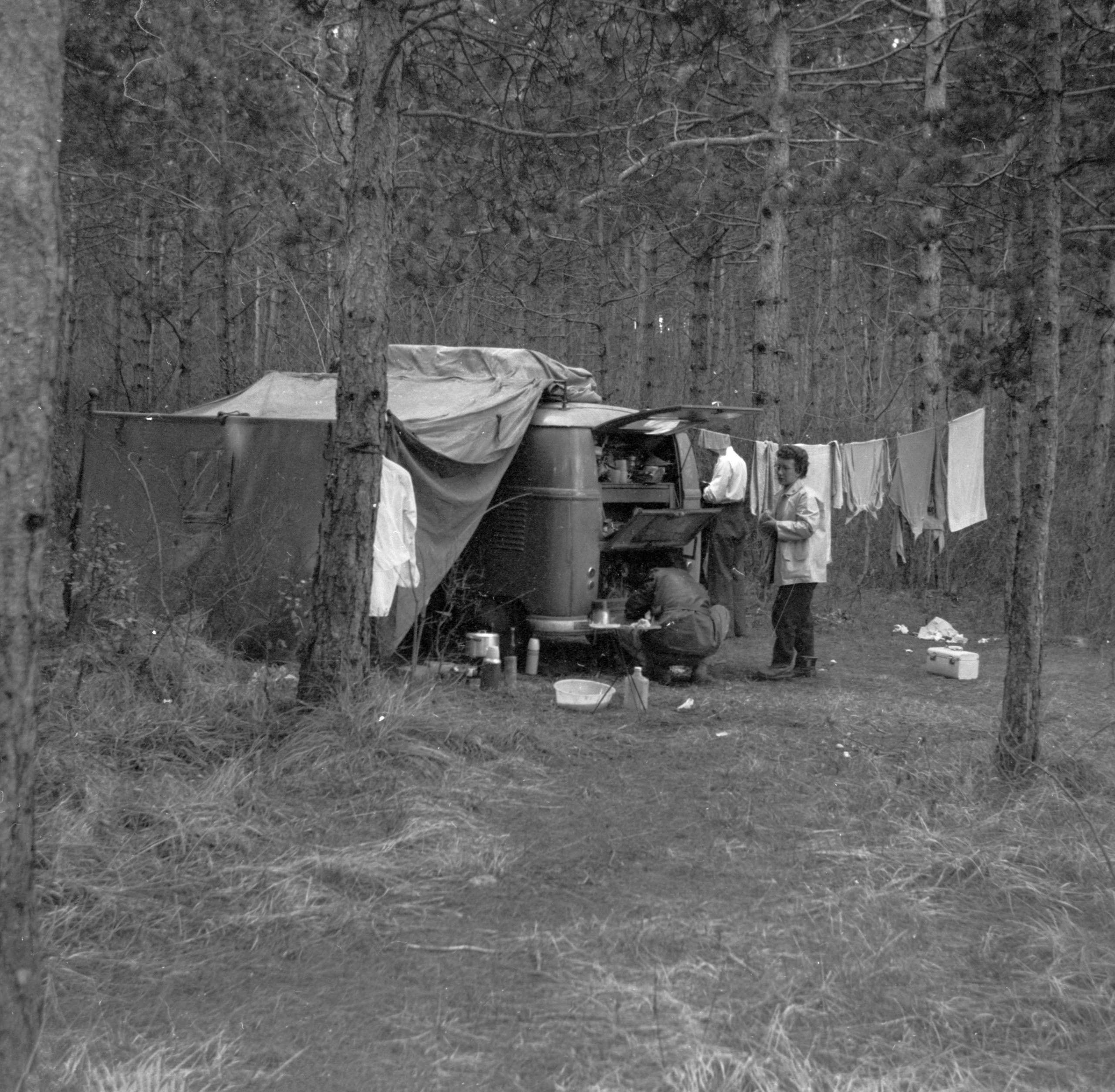 Home is a Journey - April 9 - Trieste Forest campsite