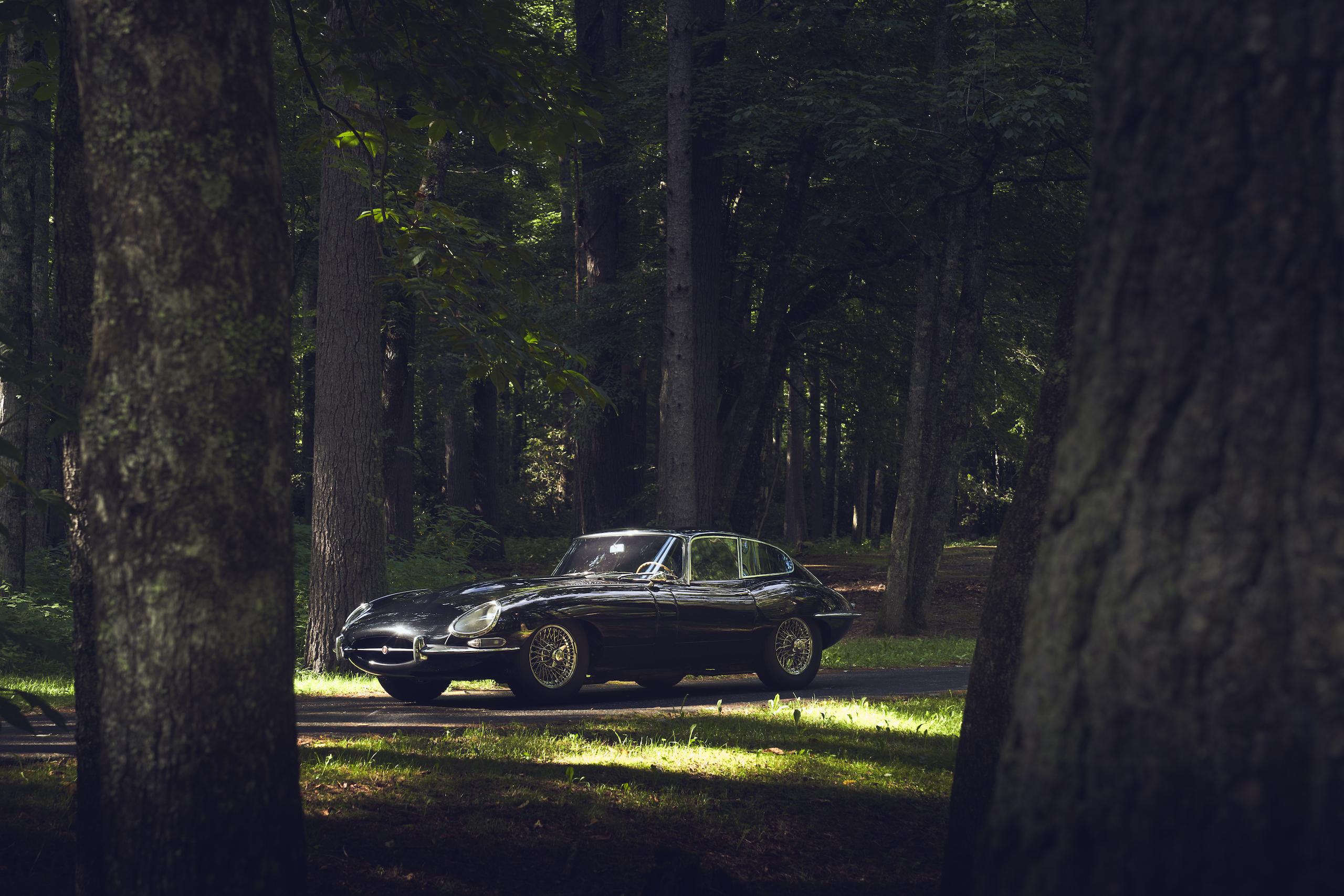 Jaguar E-Type front three-quarter forest