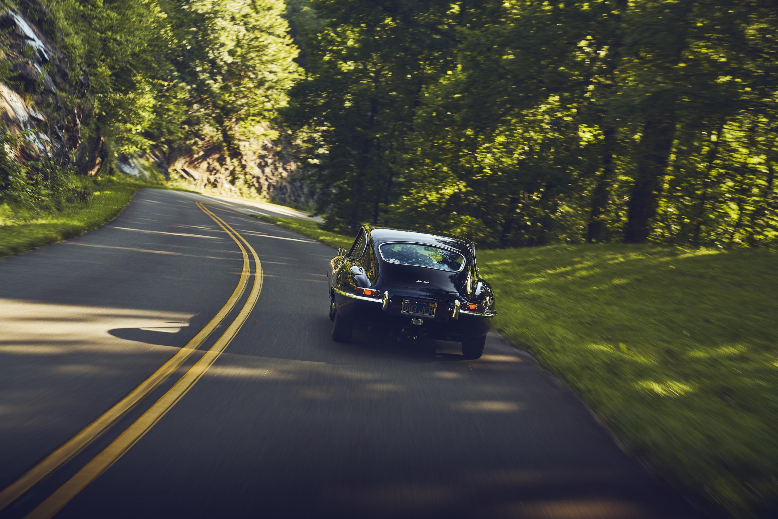 Jaguar E-Type rear action