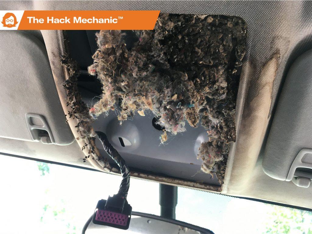 Hack_Mech_Mouse_Damage_Lead