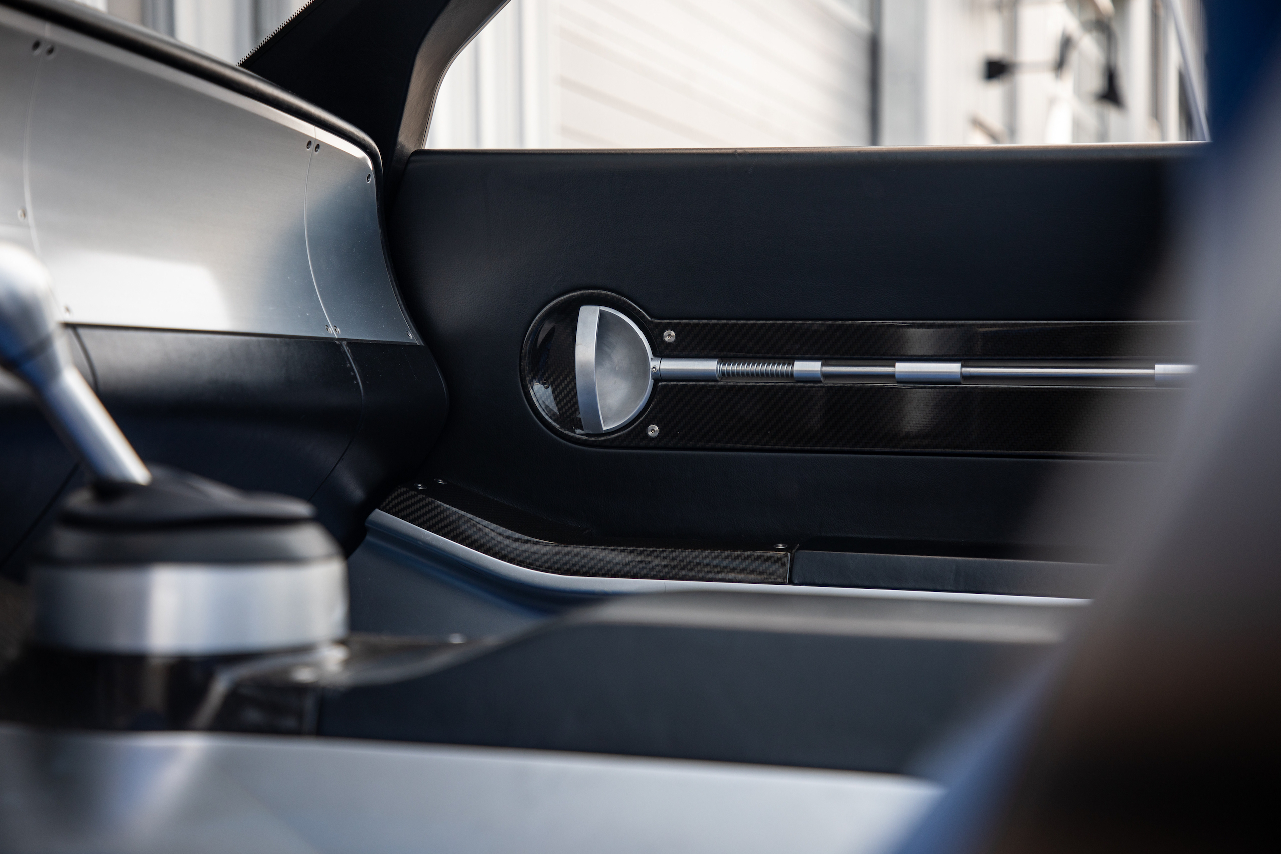 Cobra Concept interior door panel