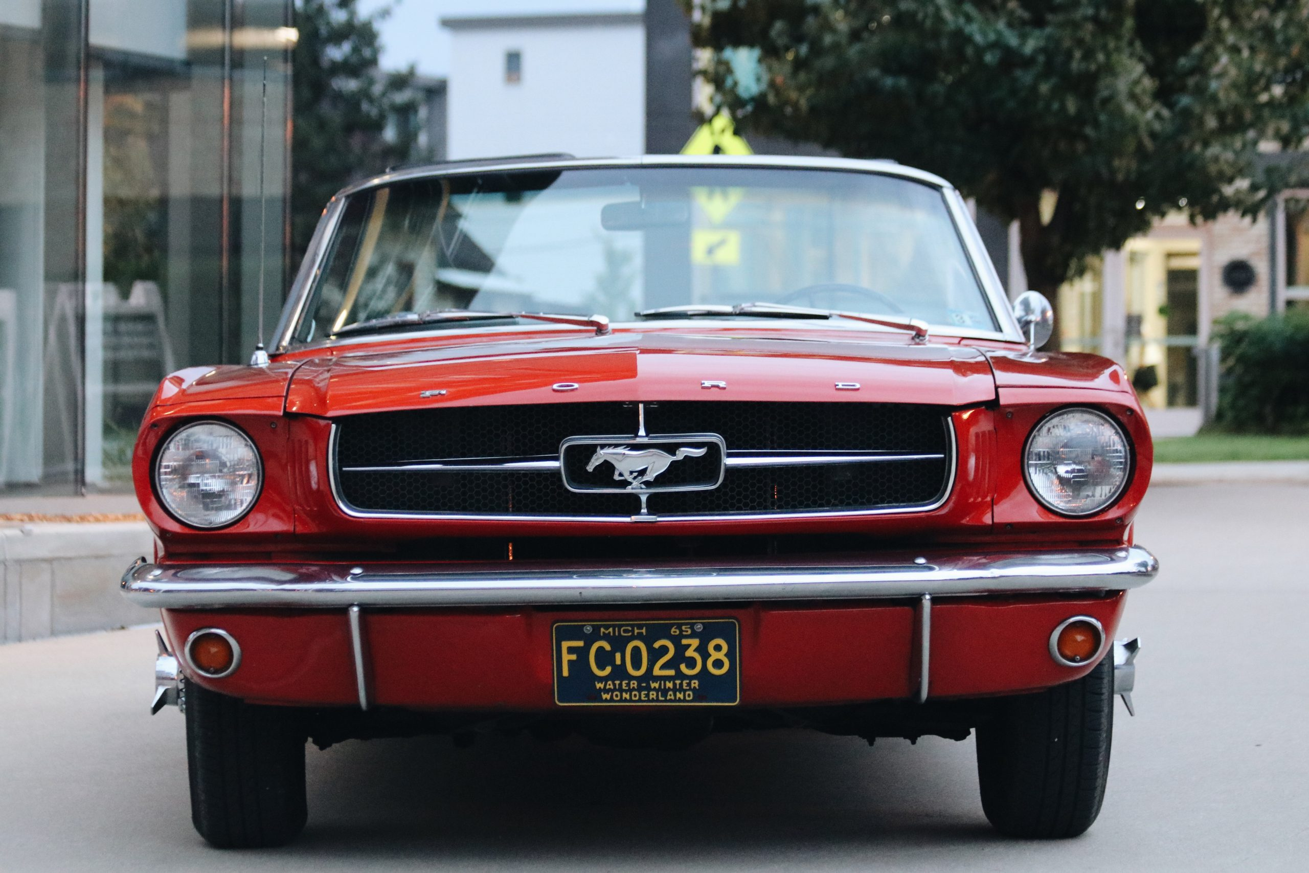Mel Heppe Mustang front
