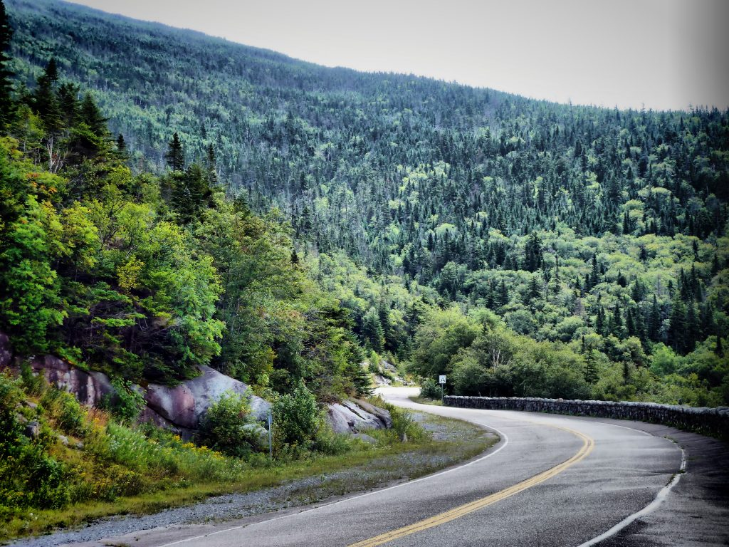 Road to Whiteface