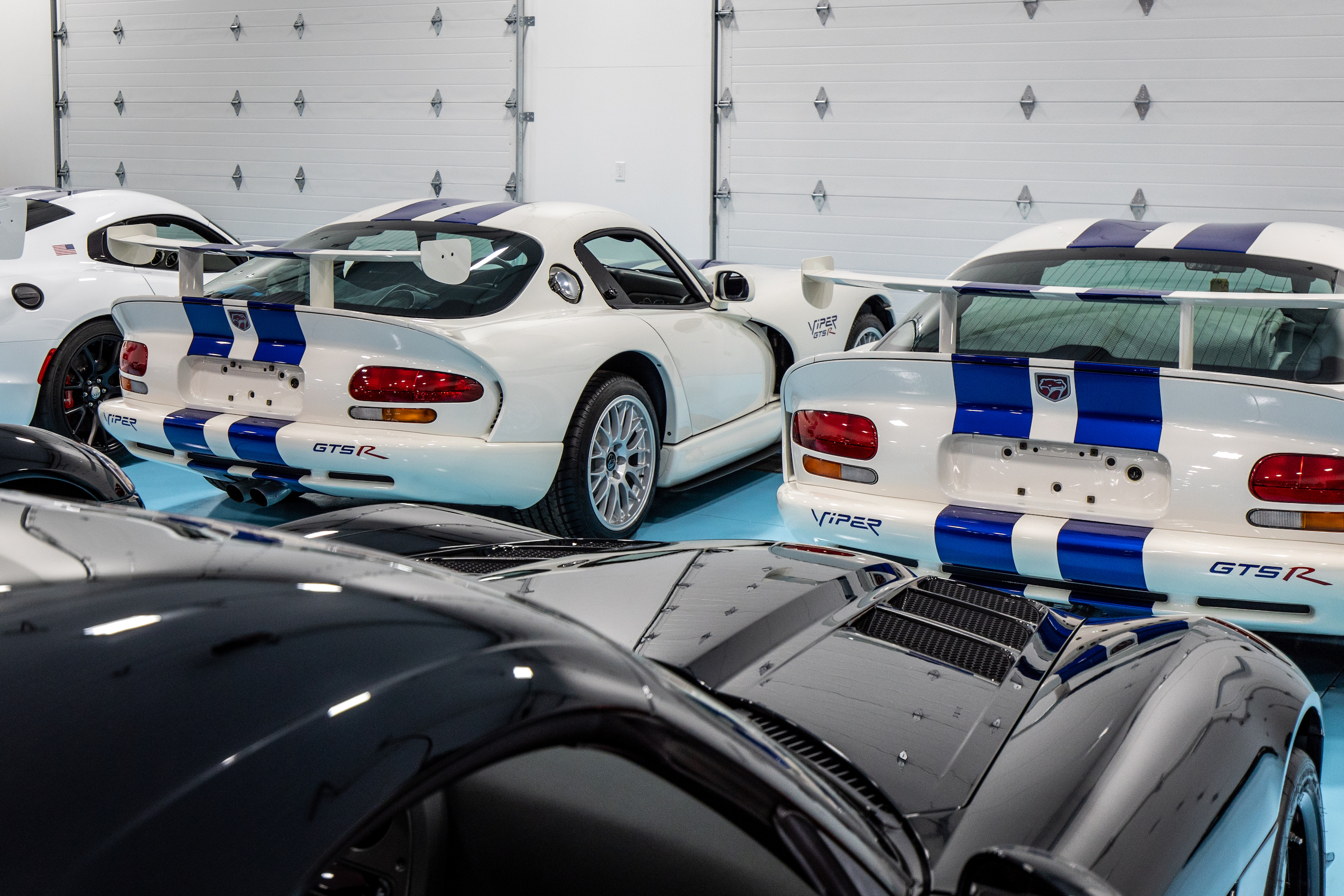 Viper collection rear