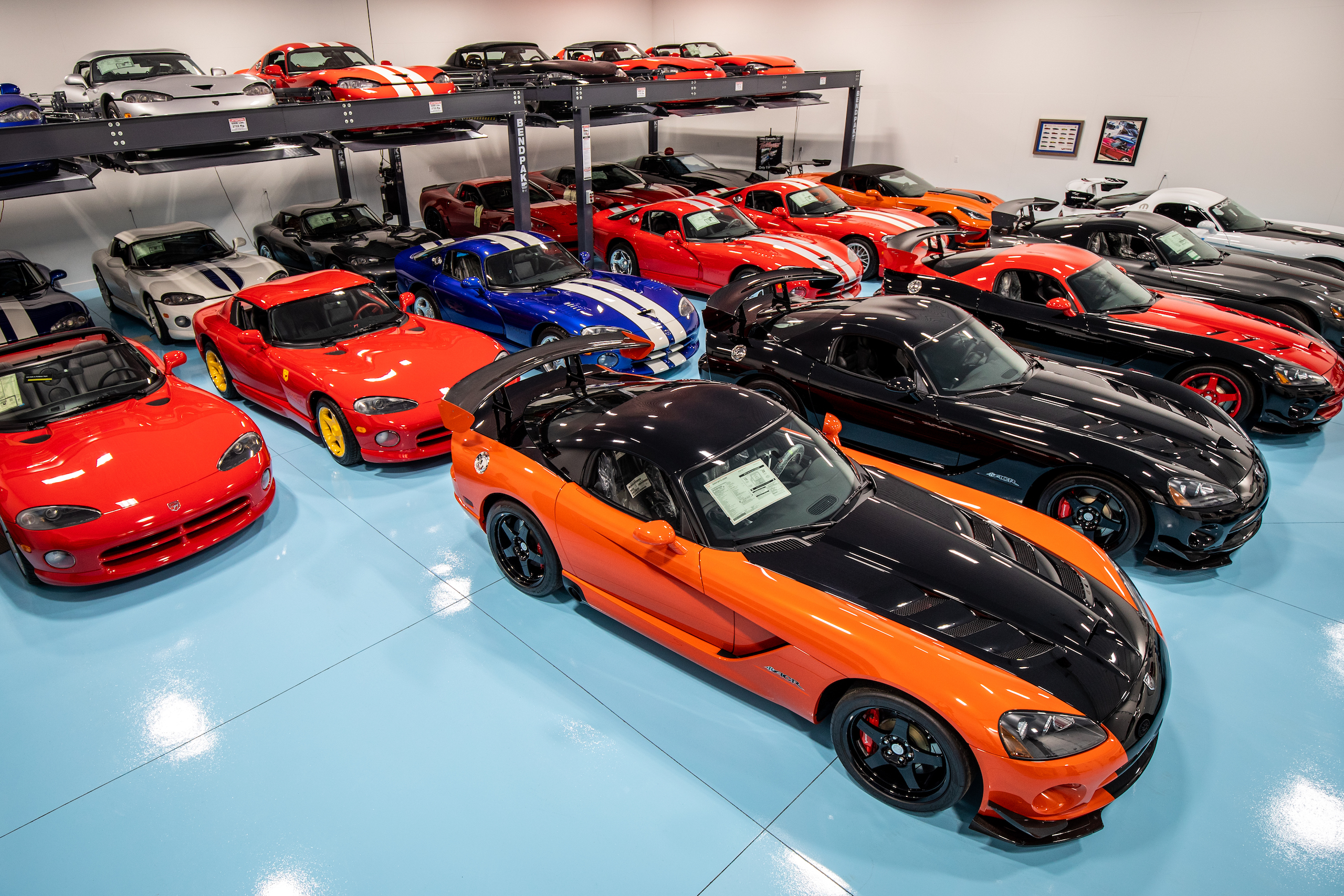 Viper collection wide