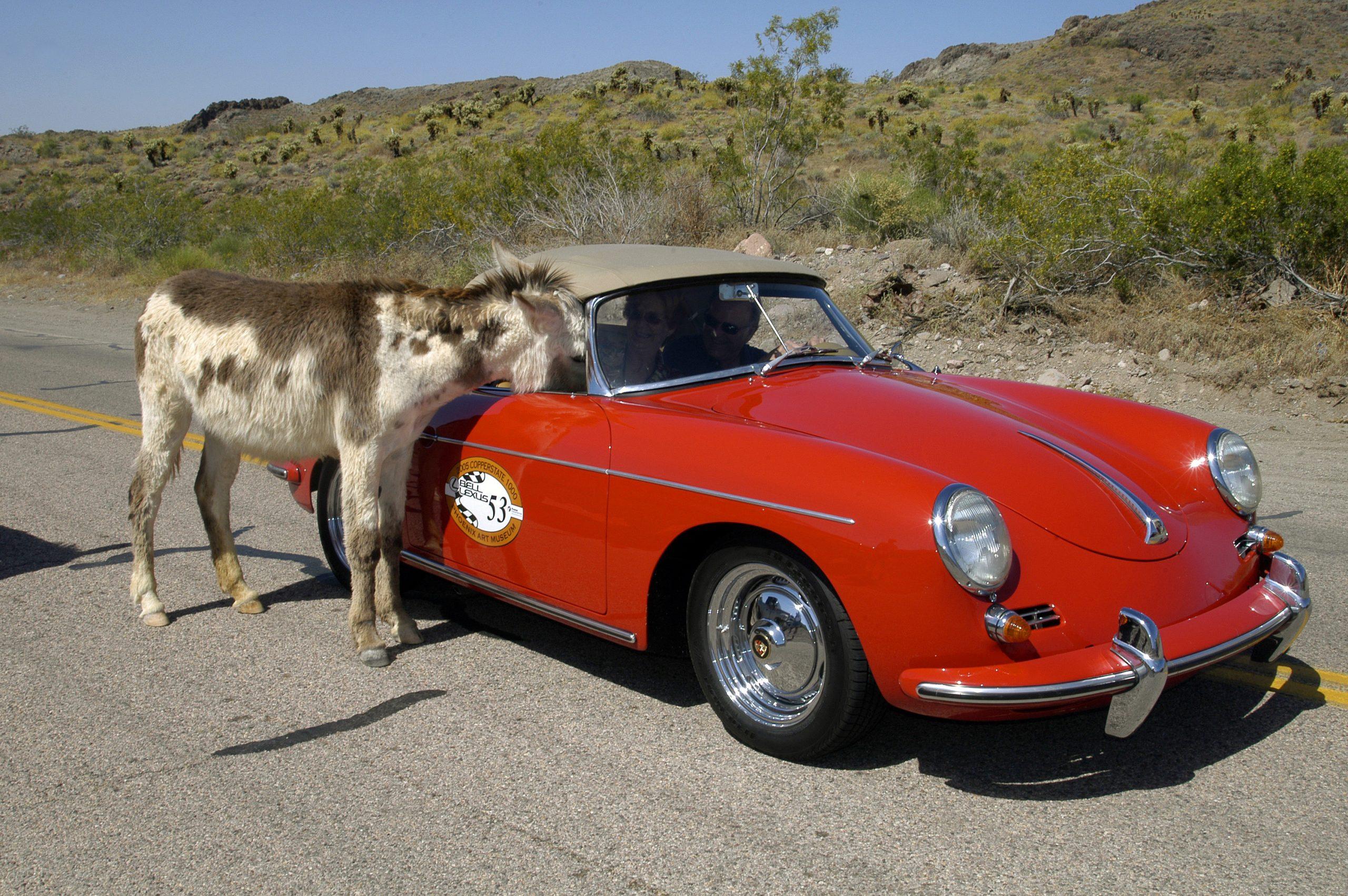 Route 66 Reunion porche donkey