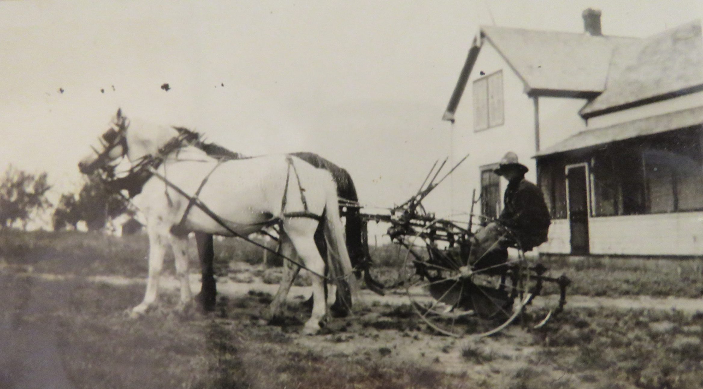 Vanderbrink - Krinke Collection - old pic of farming with horses