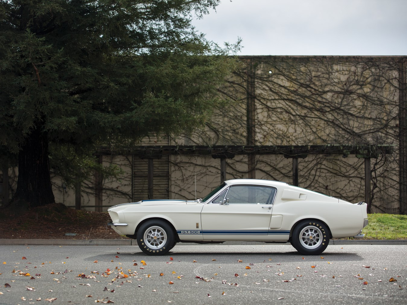 1967 Shelby Mustang GT500 Fastback