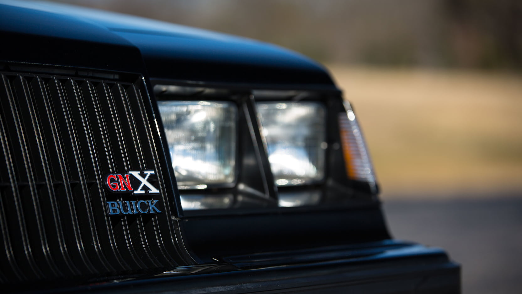 1987 Buick GNX badge detail