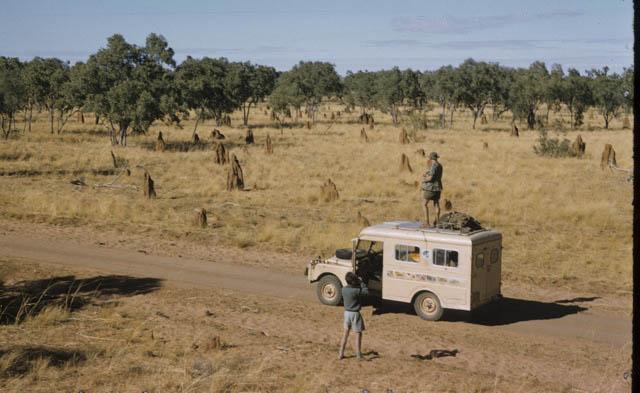 1957 Land Rover safari