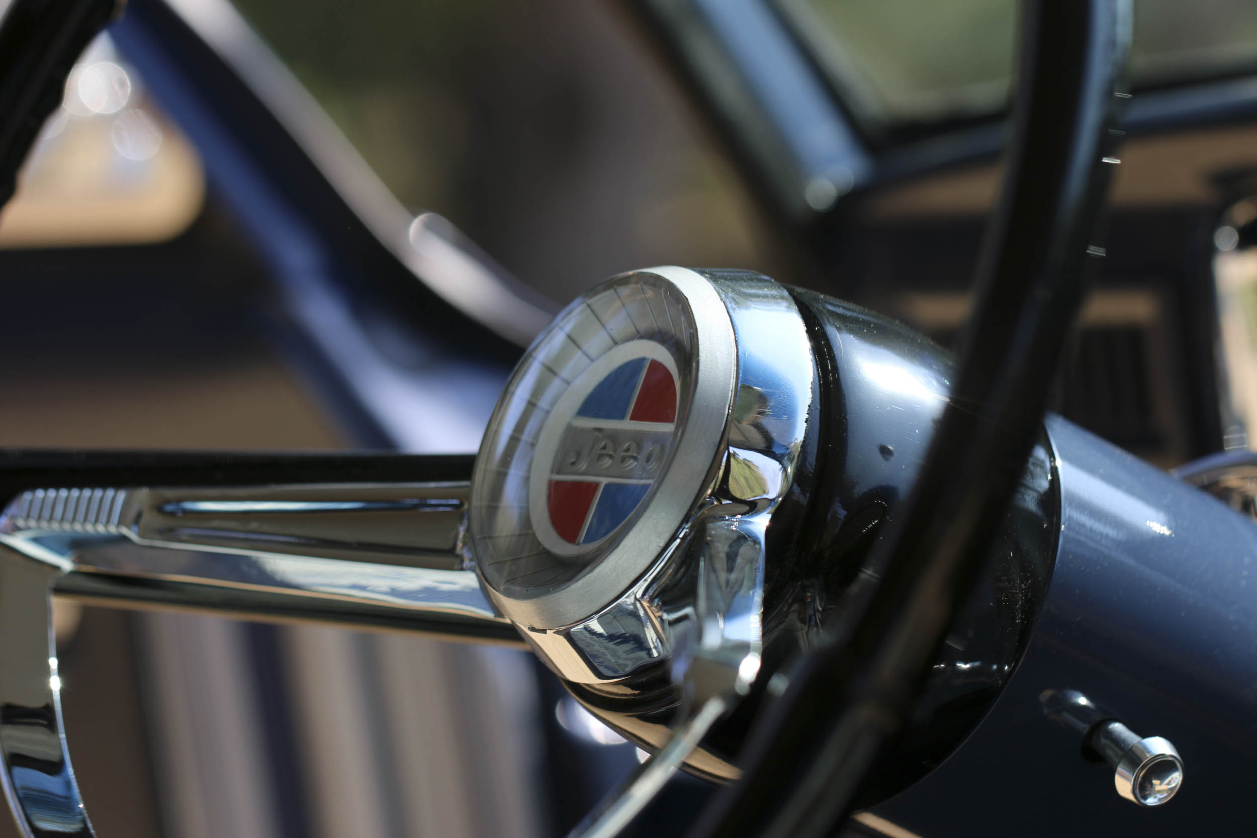 ICON steering wheel detail