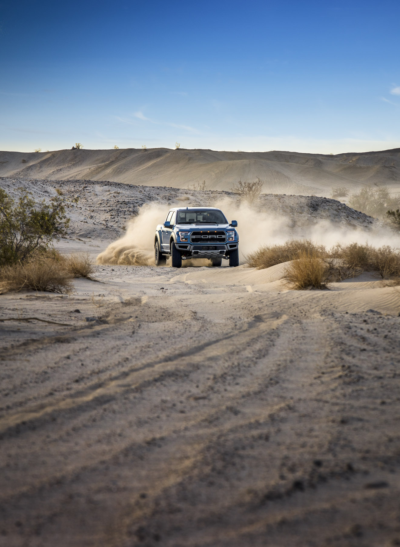 2019 Ford F-150 Raptor Dusty Trail