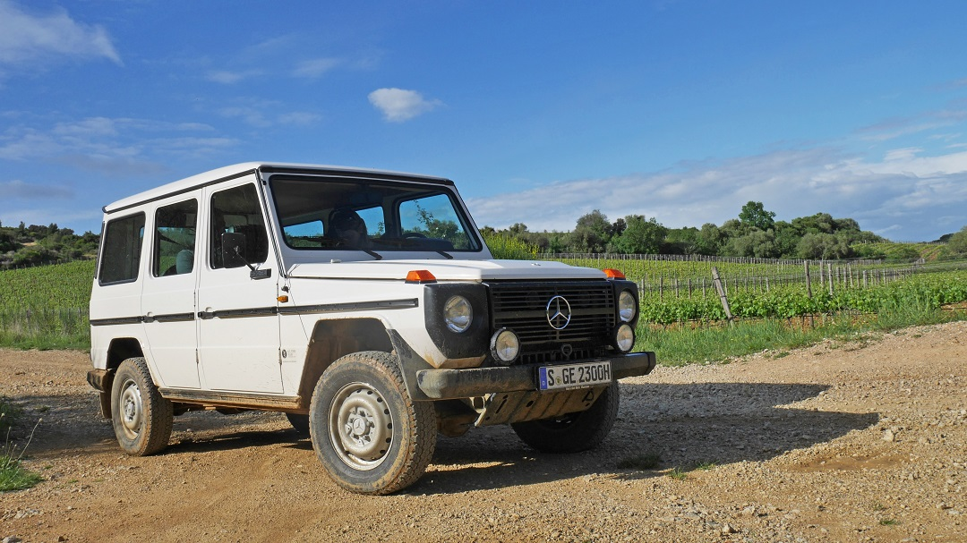 Mercedes-Benz G-wagen White green grass and trees