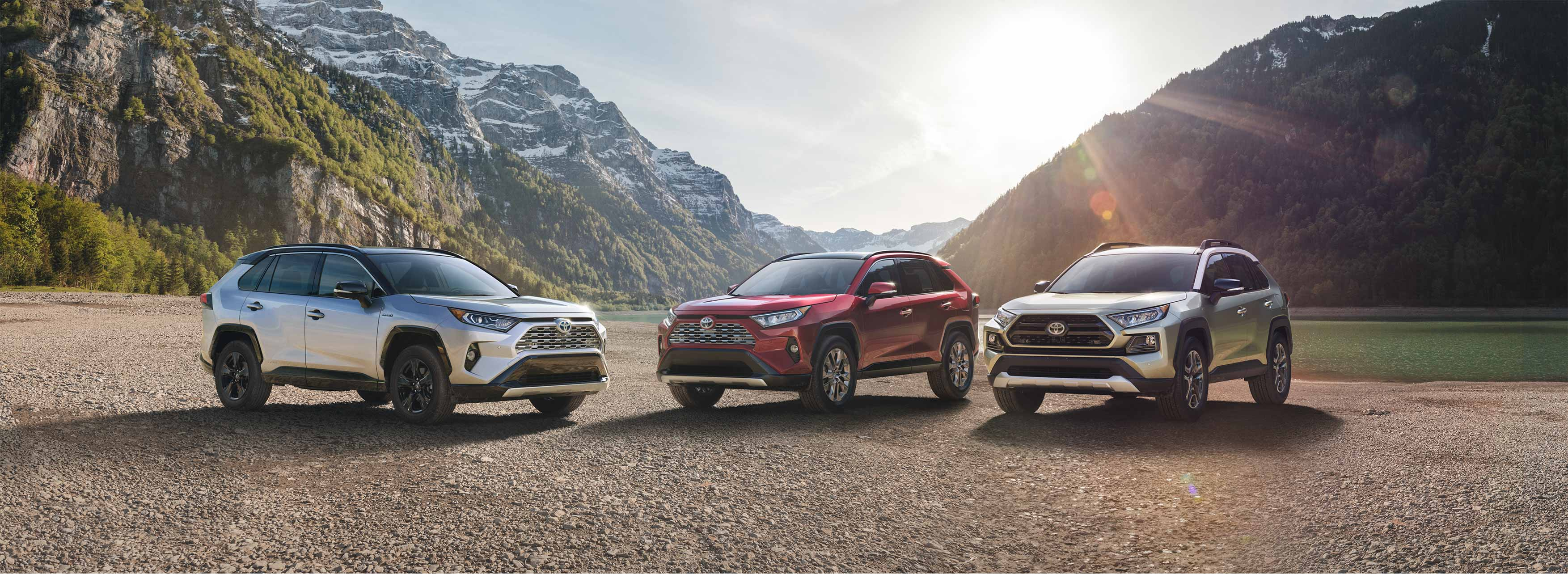 2019 Toyota RAV4 lineup