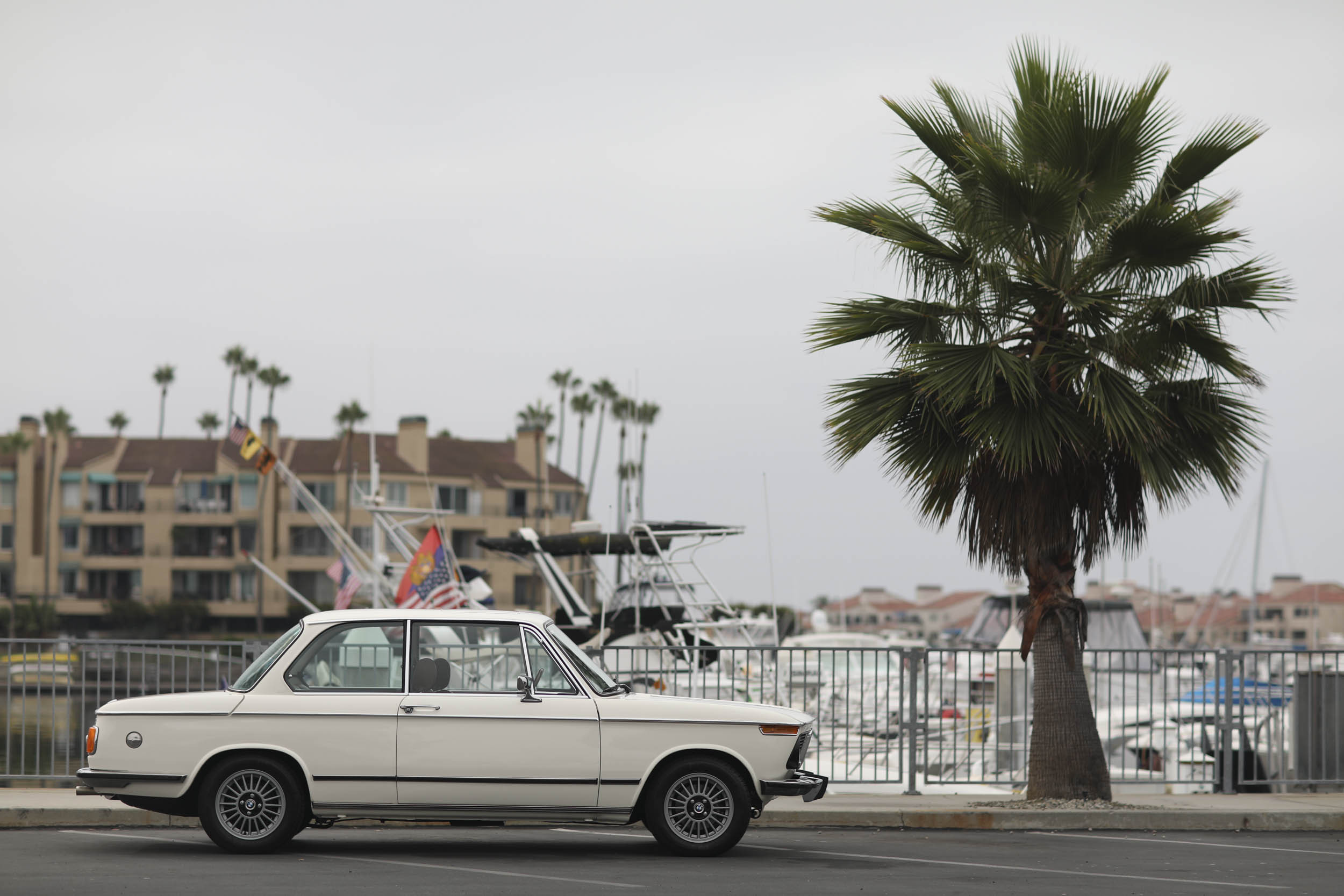 1975 BMW 2002 profile palm tree