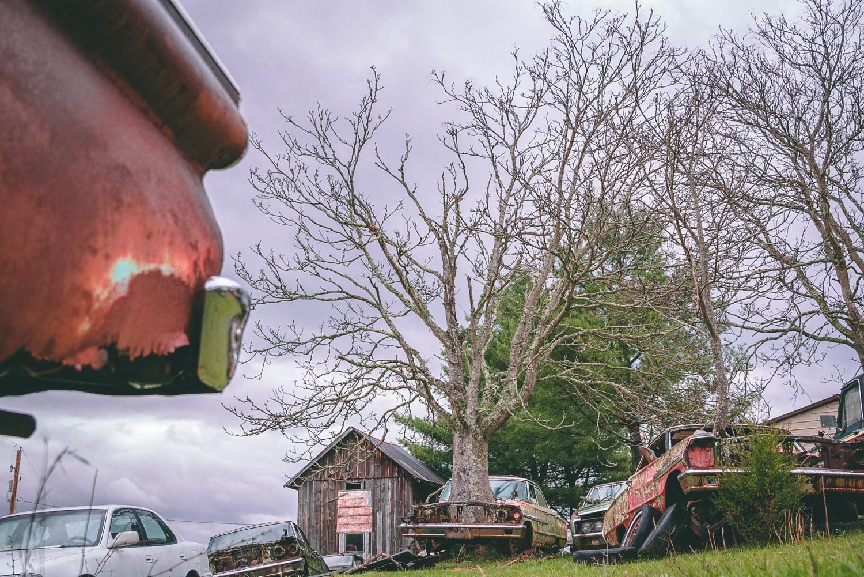 Barn Find Hunter big tree through hood