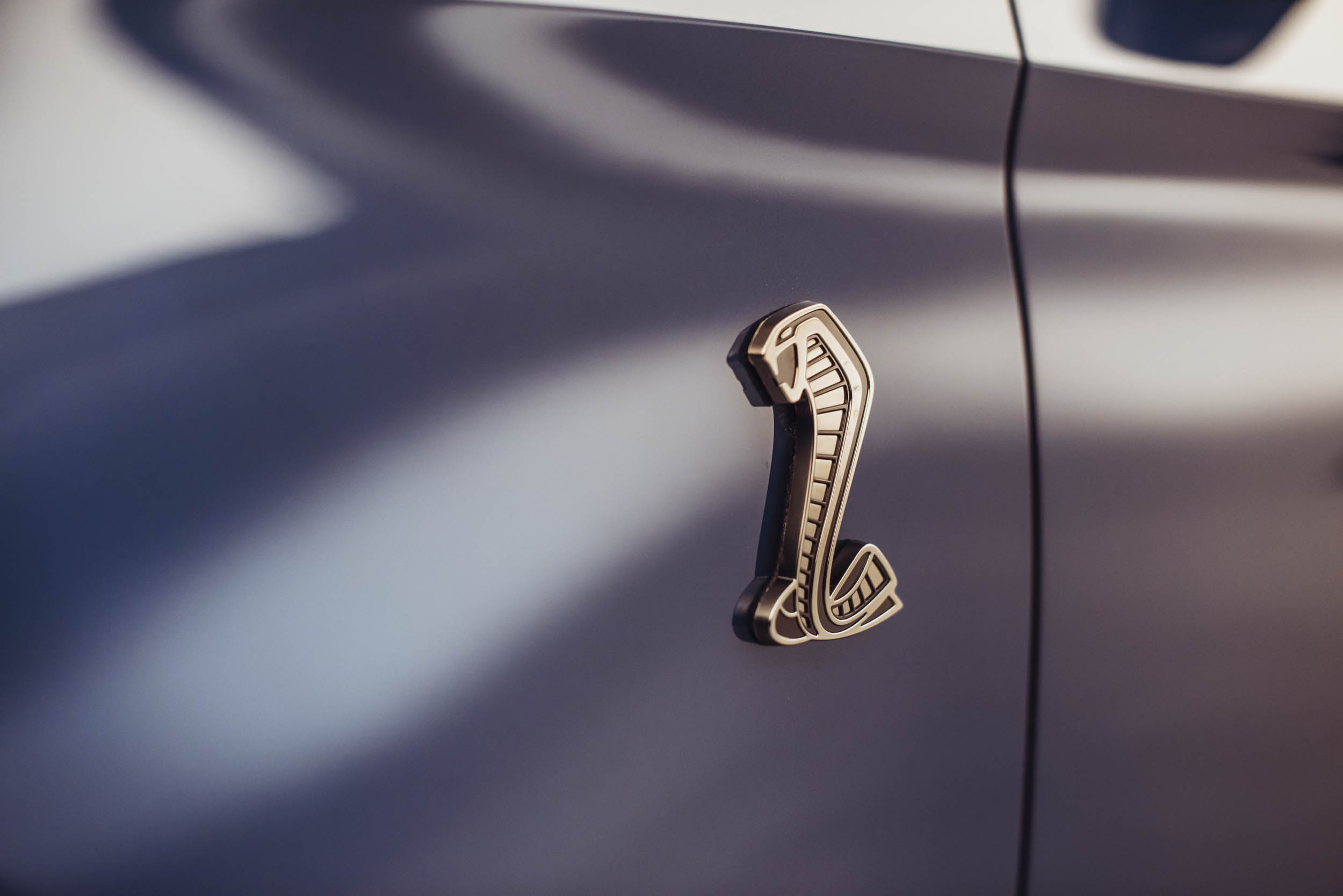 2020 Shelby GT500 snake badge