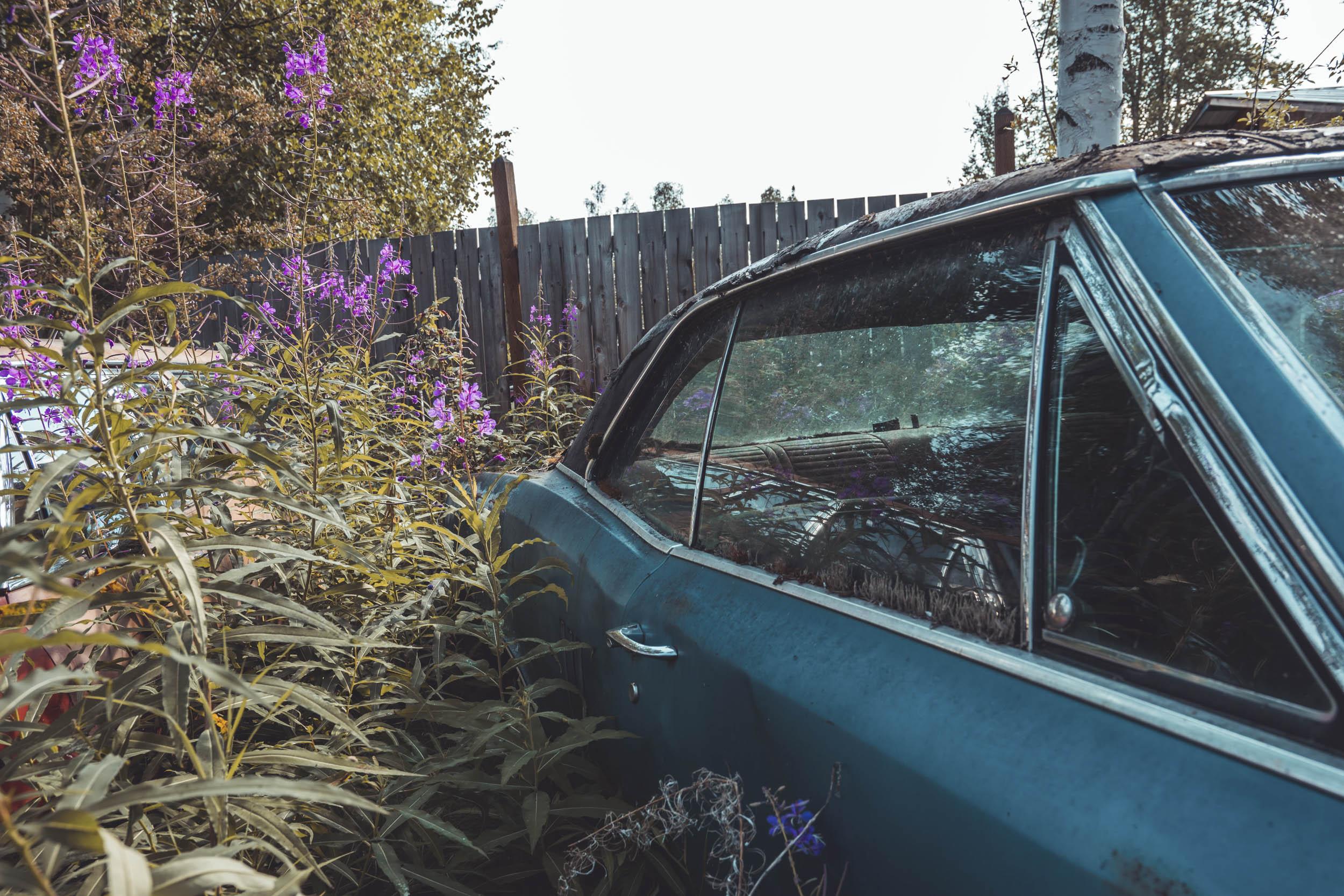 Pontiac found in a field