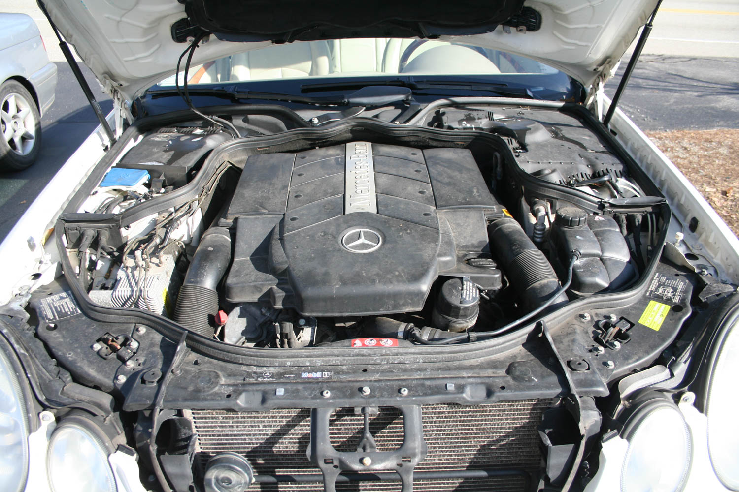 The 302-hp 5.0-liter motor, surprisingly, did not light my fire.
