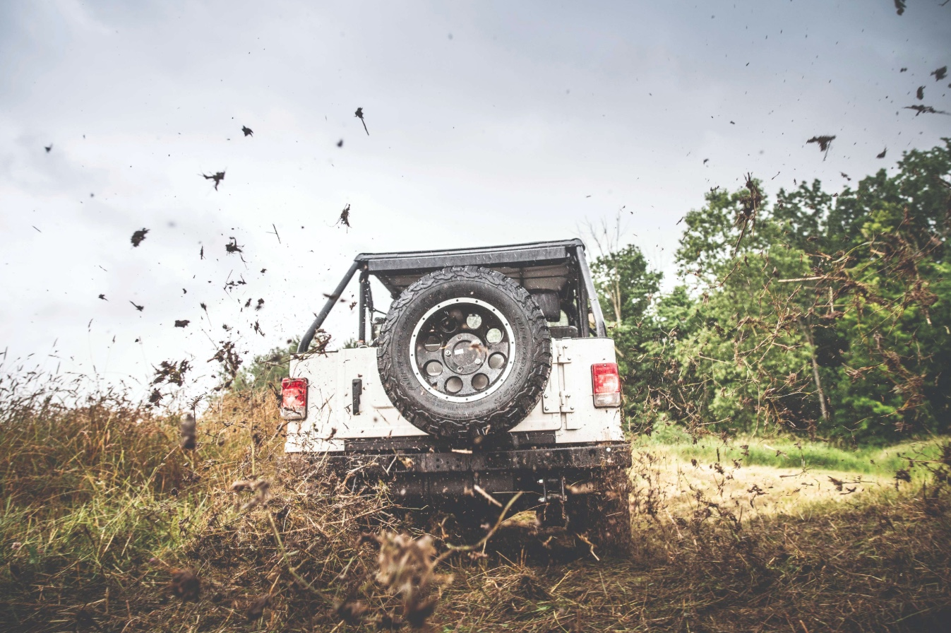 Mahindra Roxor rear mud